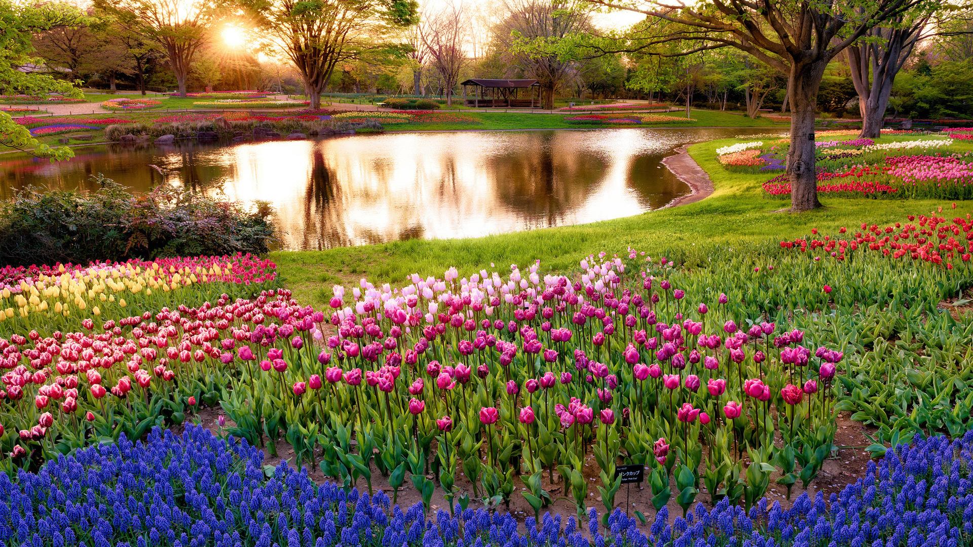 благодарности самые красивые фото весны в мире национальность, женщины тайна