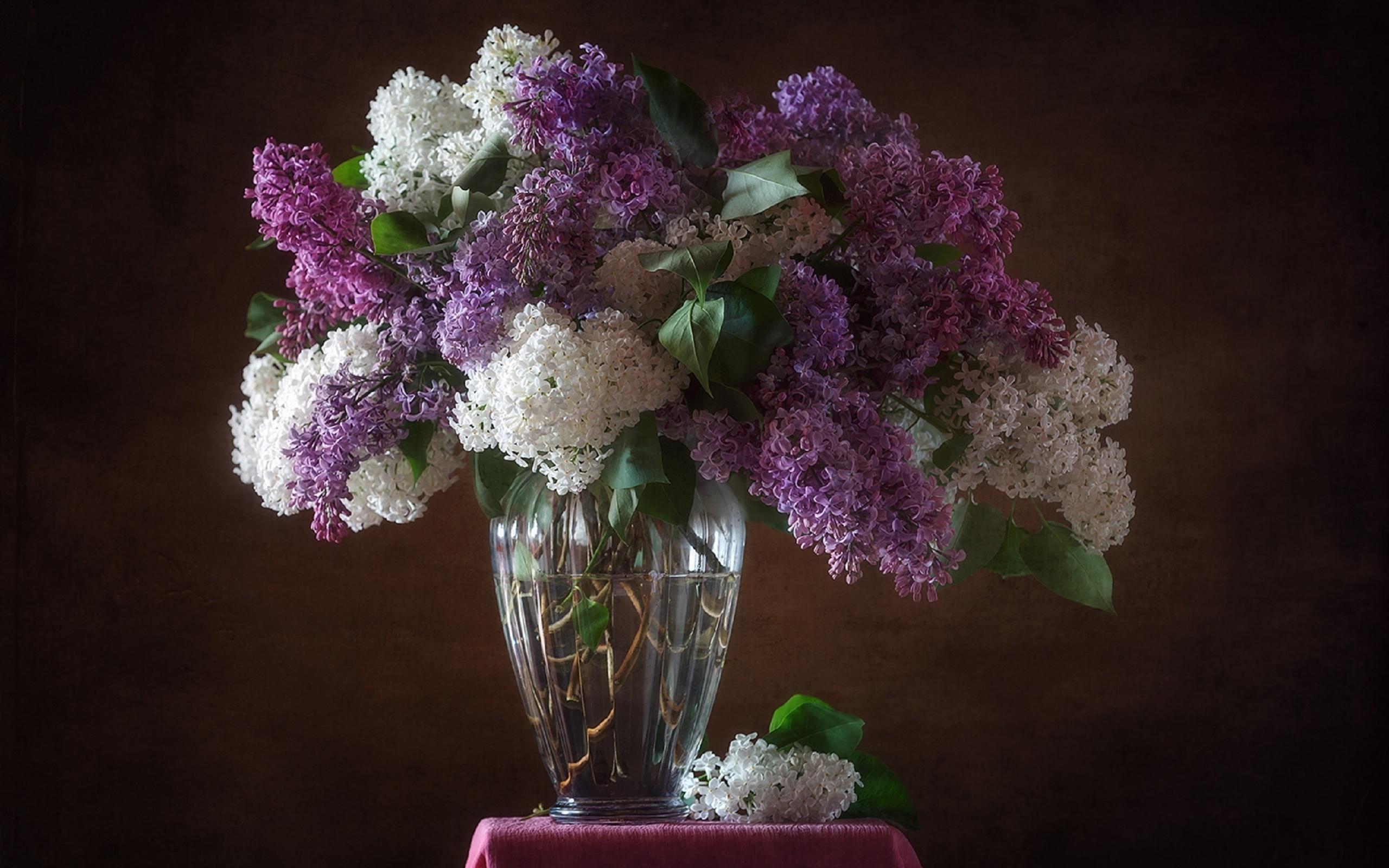 сирень в вазе картинки красивые вашему