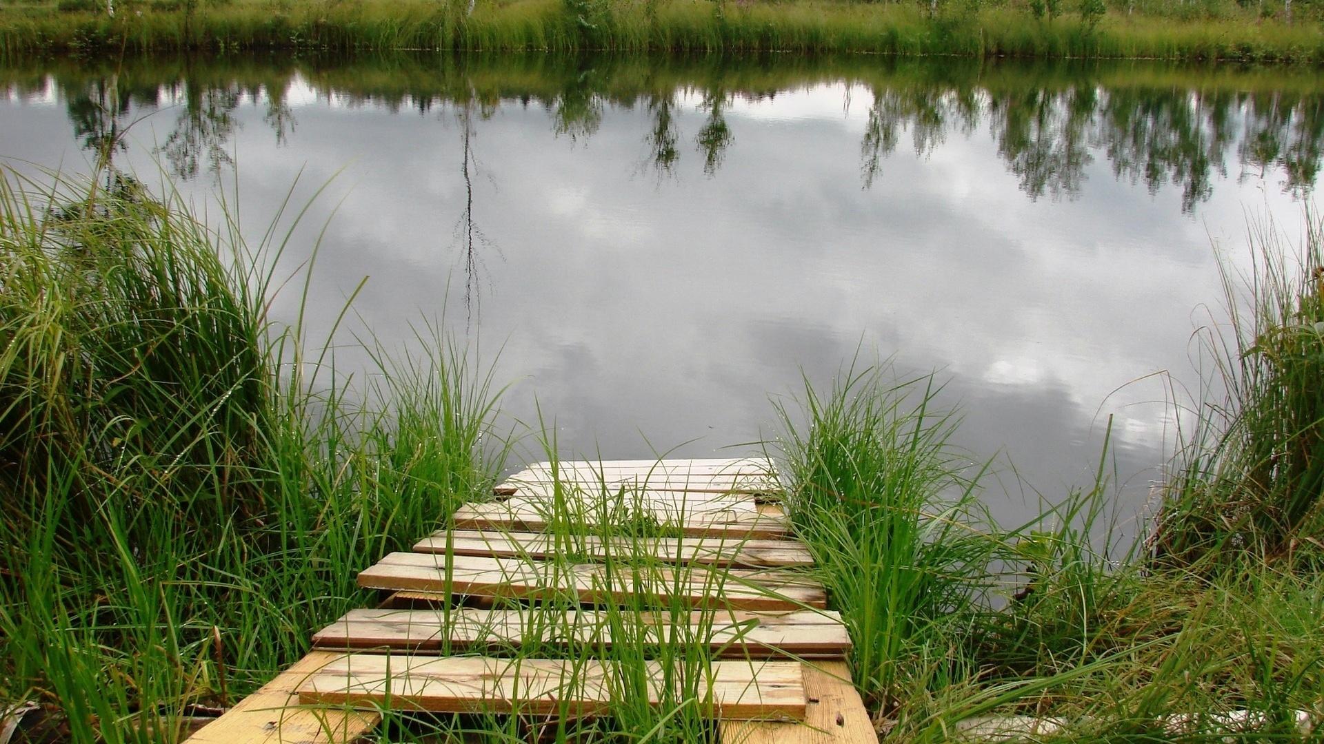 картинки подлого пруда выходят