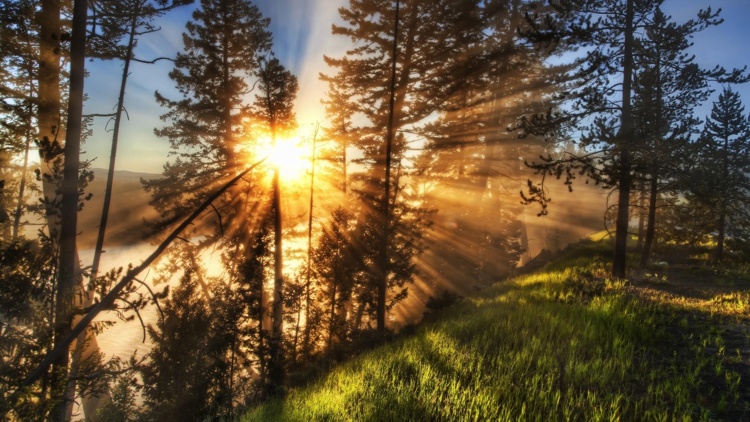 сначала красивые фотографии утро природа него