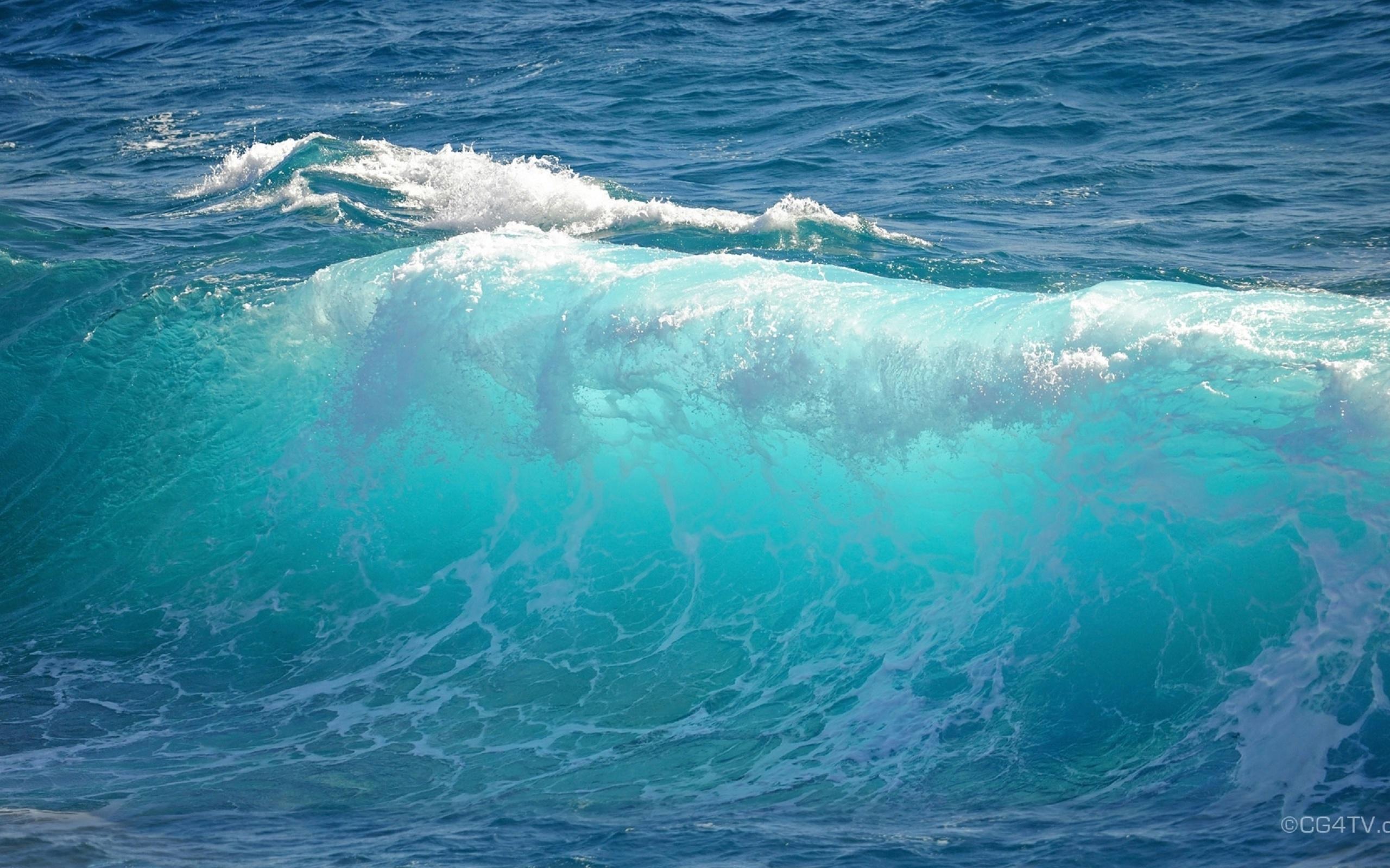 океан здоровья картинки живые так