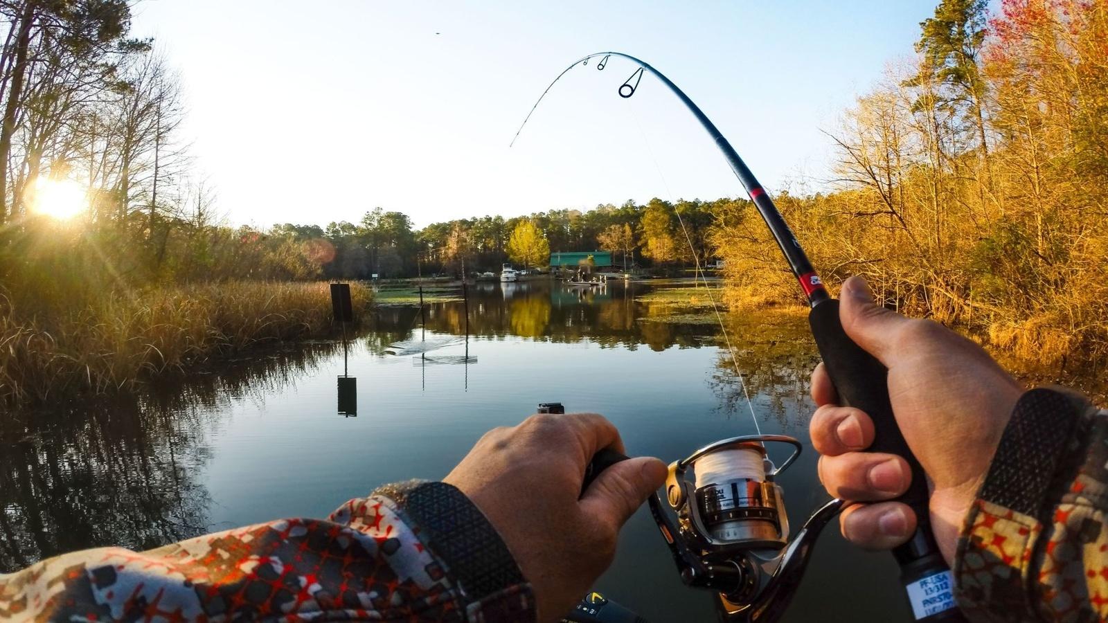 Картинка с рыбалки
