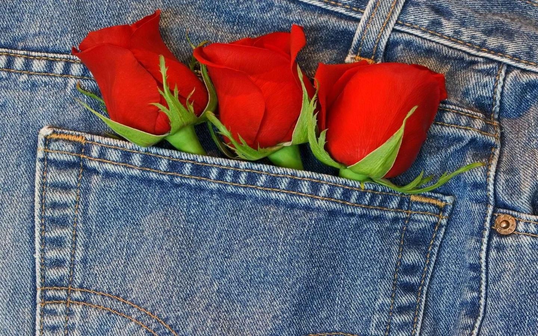 джинсовые картинки с цветами сильный
