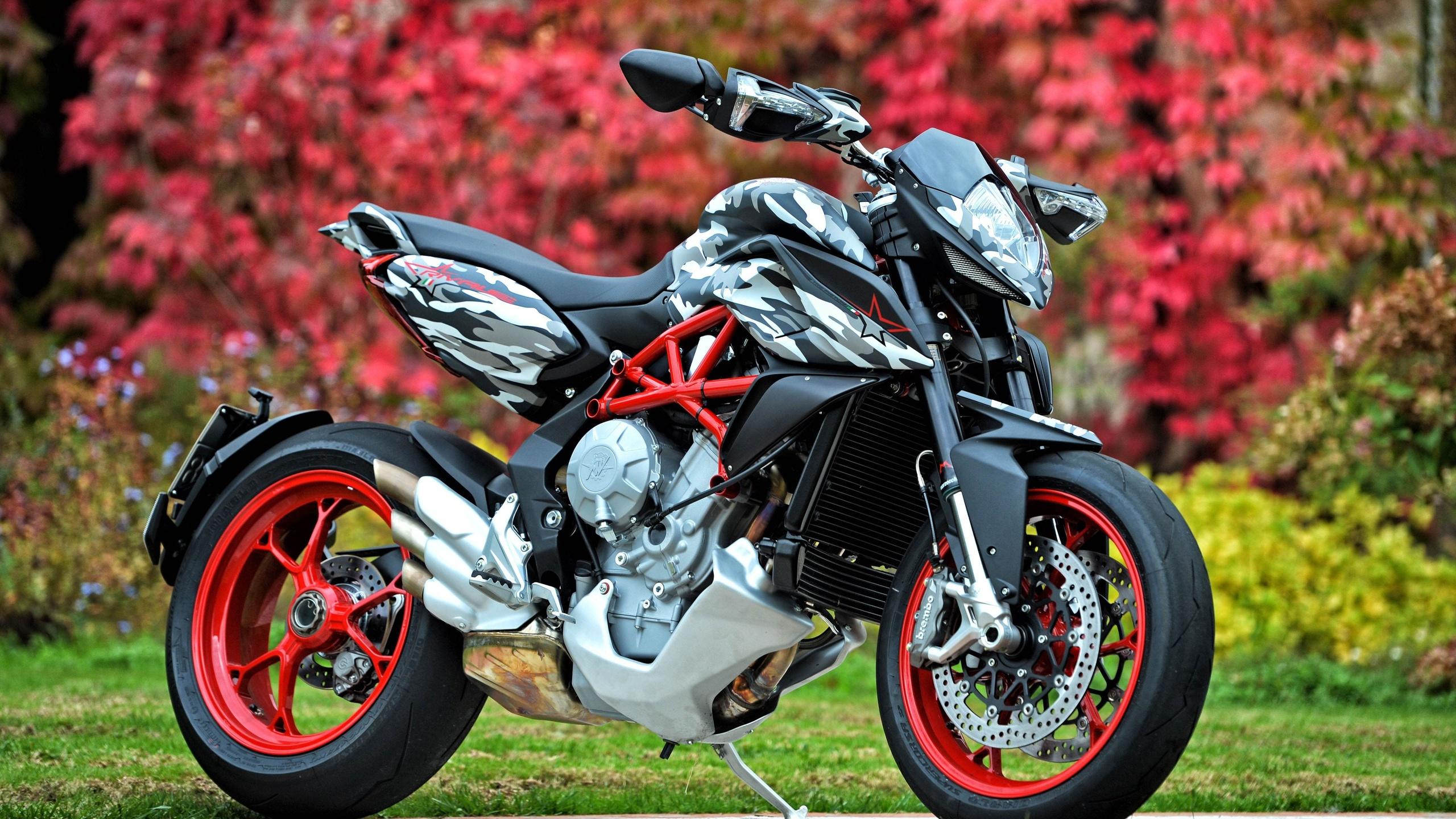 Мотоцикл фотки крутые