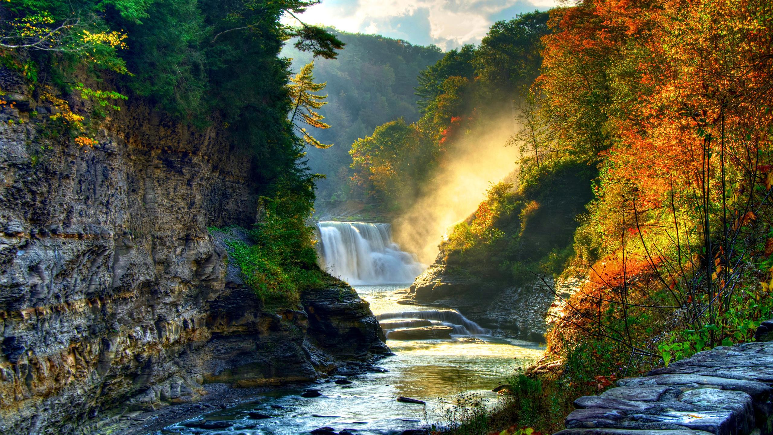 имеет картинки леса с водопадом создание