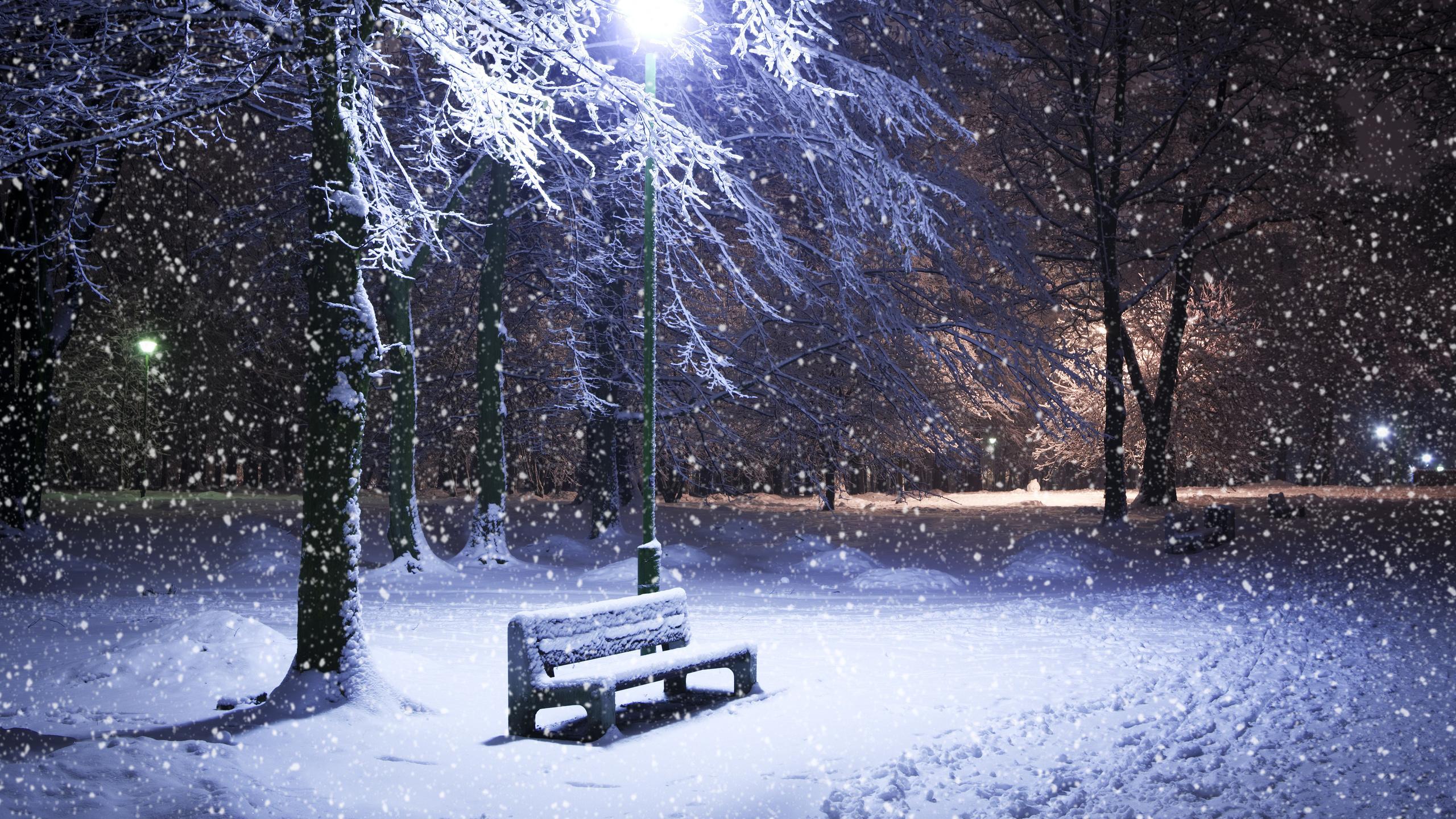 фото зимы ночью идет снег будапешт выбралась