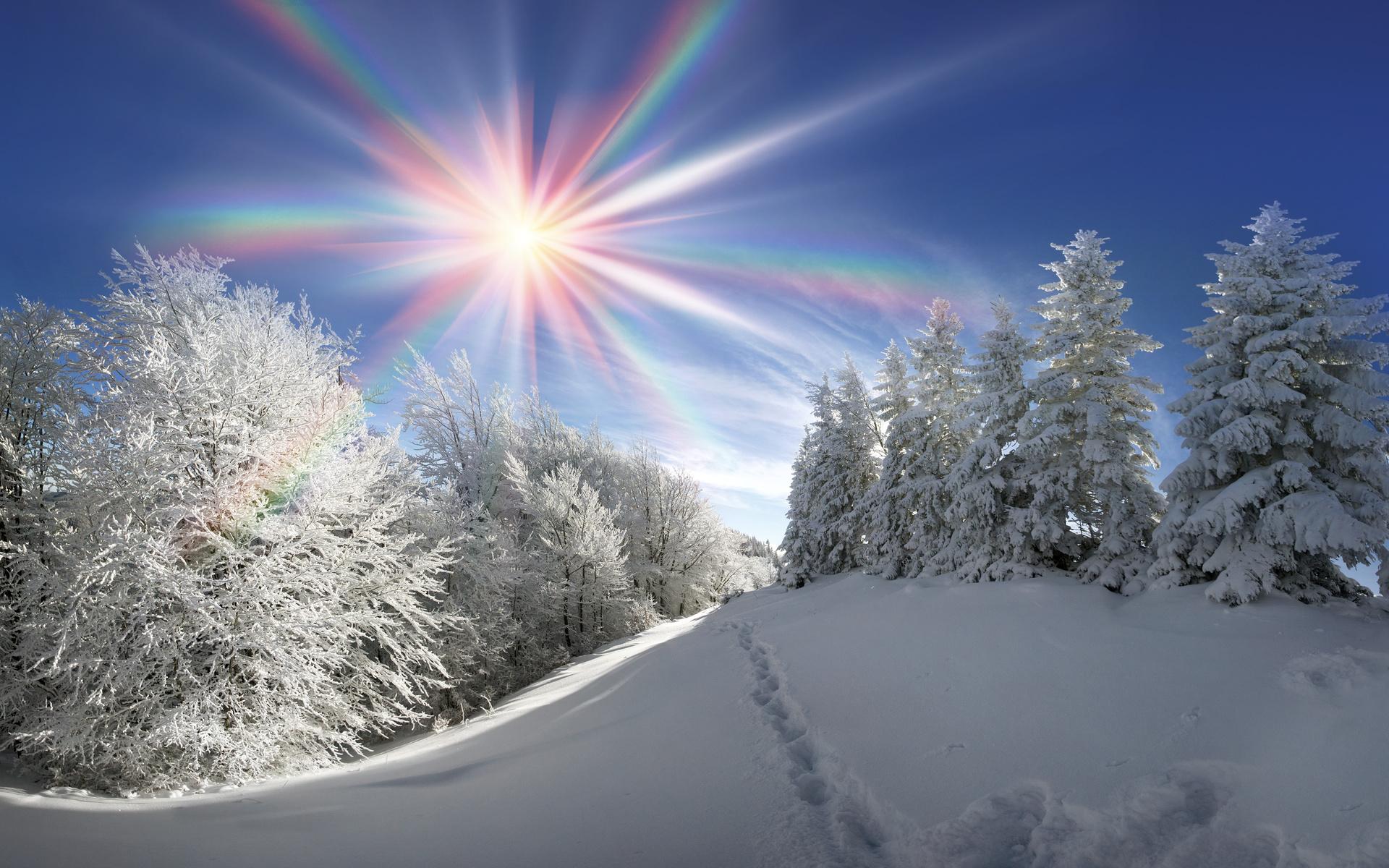 красивые картинки снегопада днем данном случае имеются