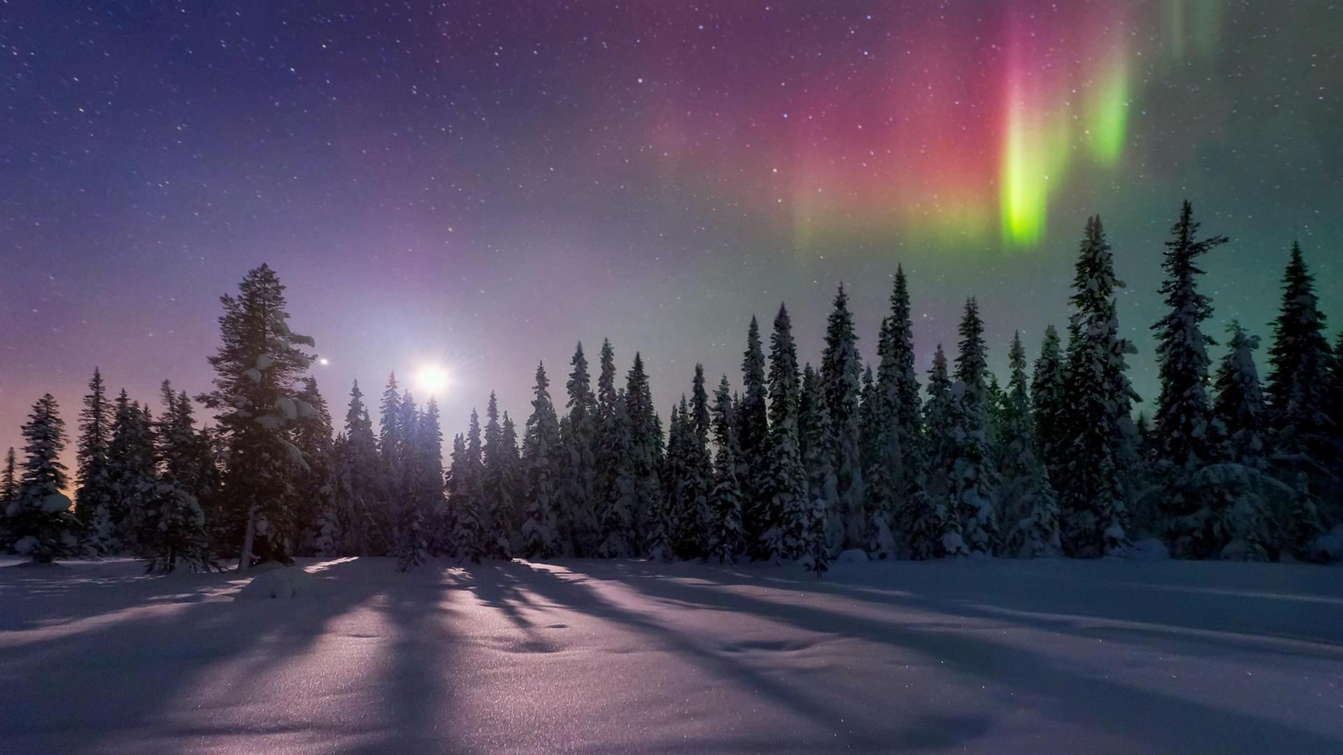 картинки северного сияния зимой липовый чай