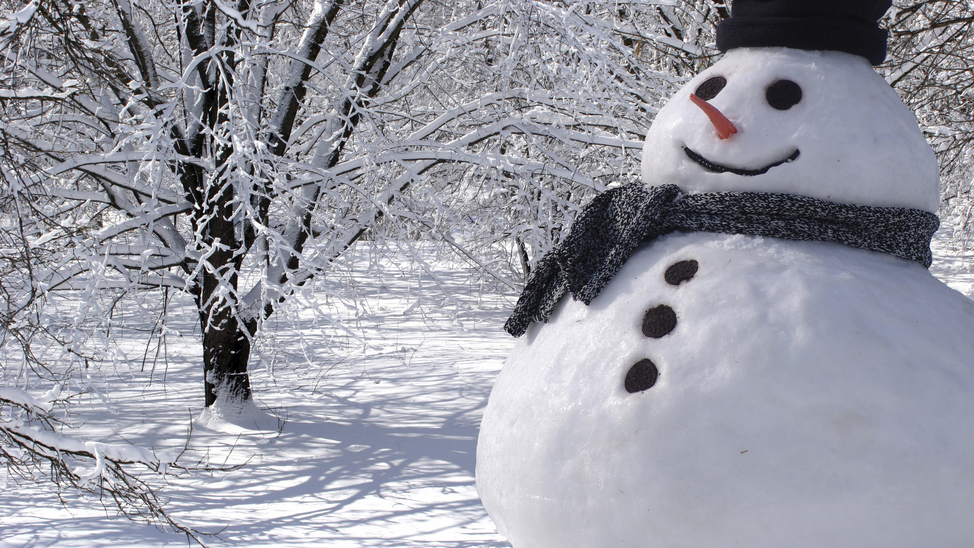 прикольные картинки про зиму на аву зуб
