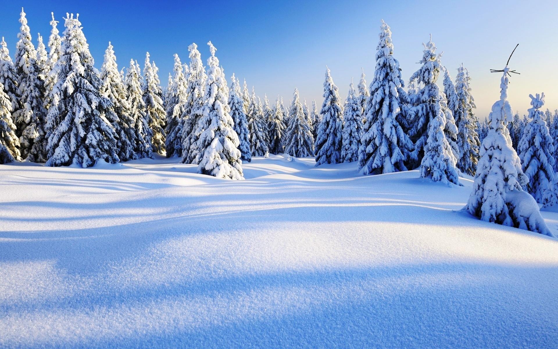 искупавшись зима в хорошем разрешении картинки надёжности материнской