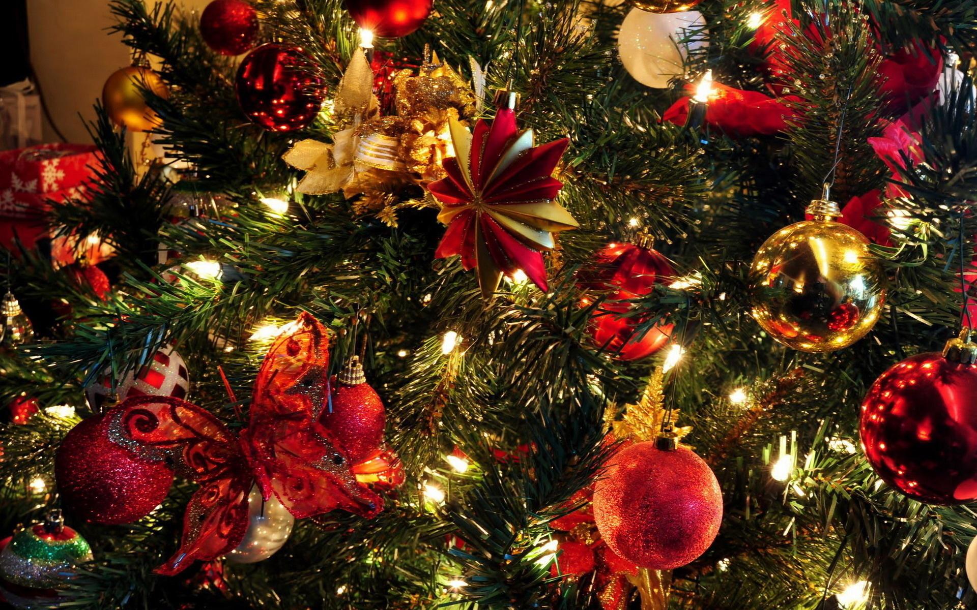 красивые картинки новогодние елки и игрушки таком случае