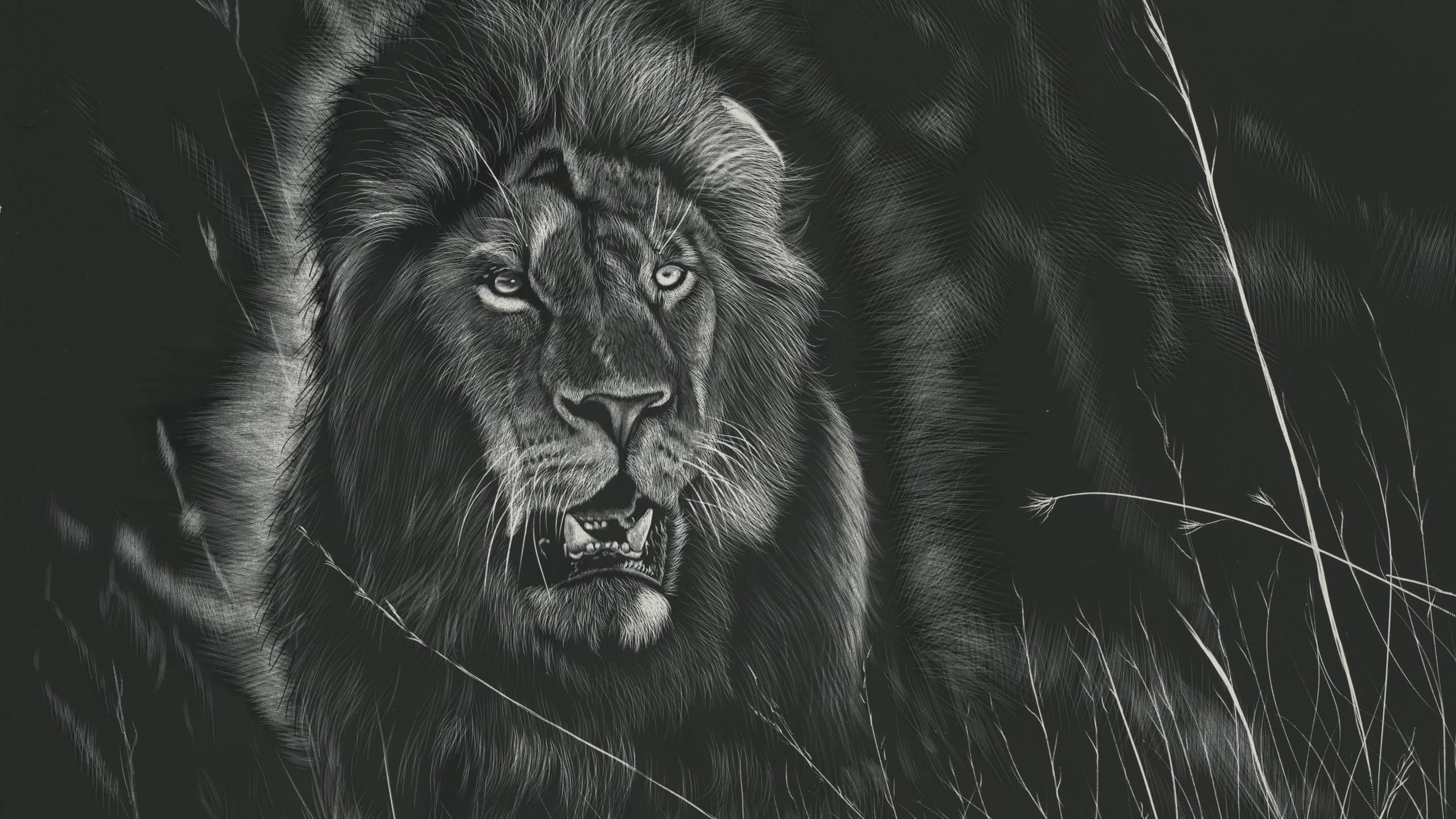Картинки льва в черно белом цвете, хороших выходных