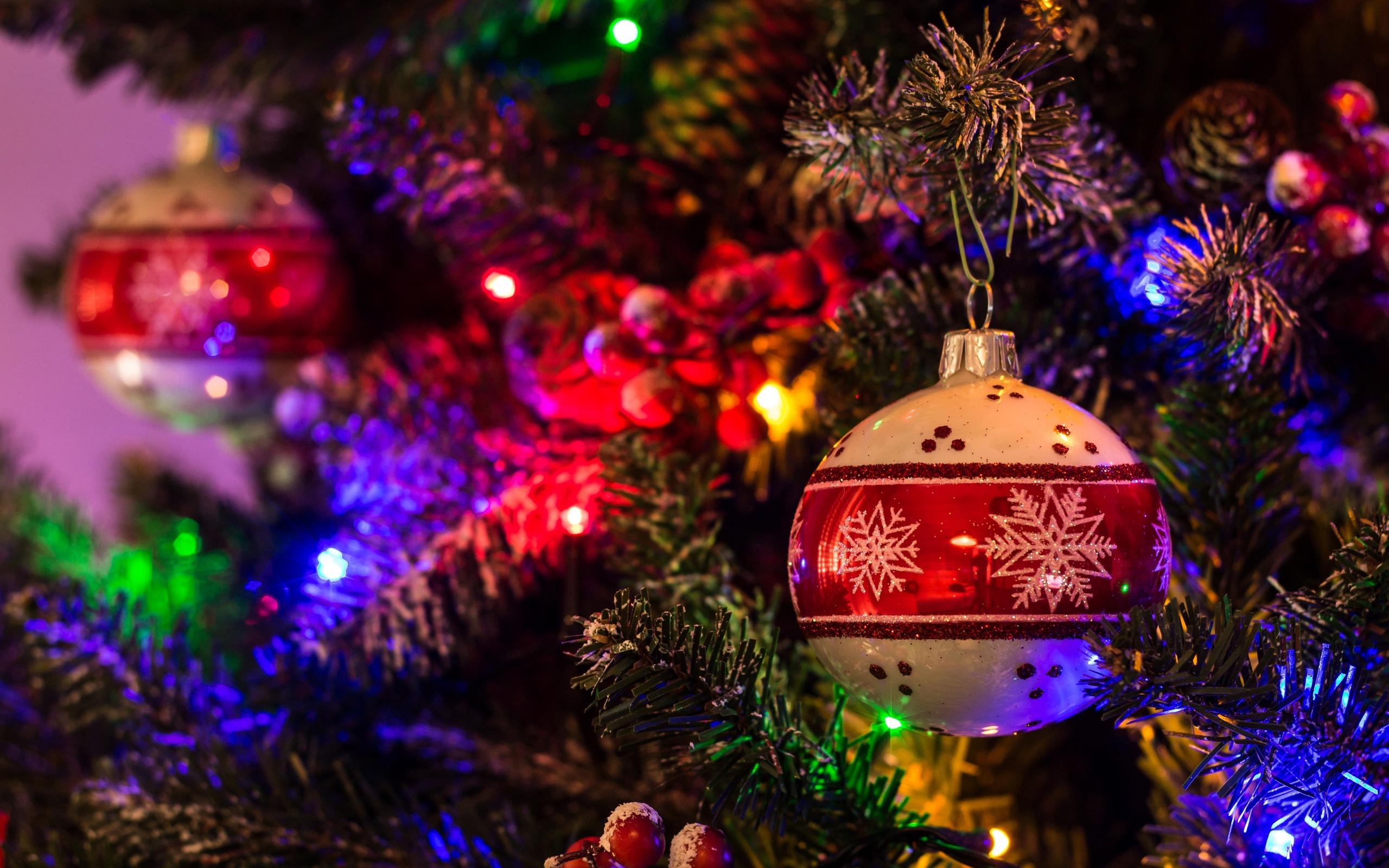 другое картинки елок на новый год 2019 собами