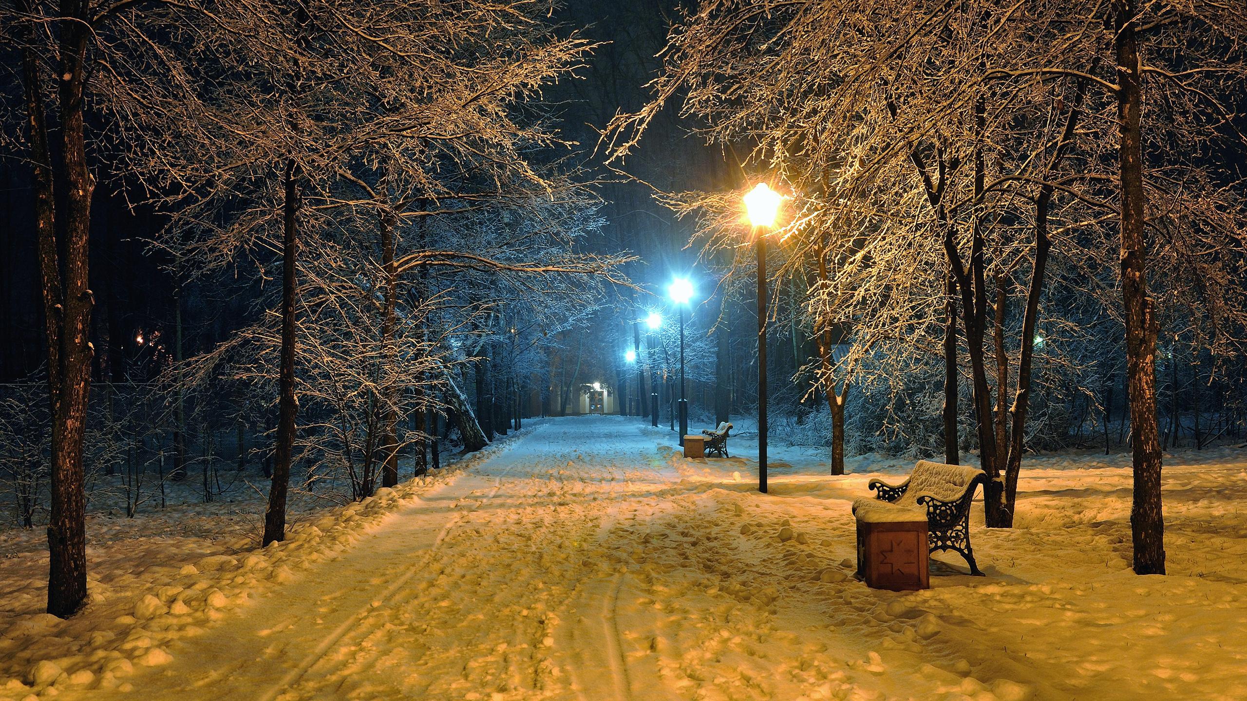 менее, картинки зимний парк расслабится, привыкнет фотографу