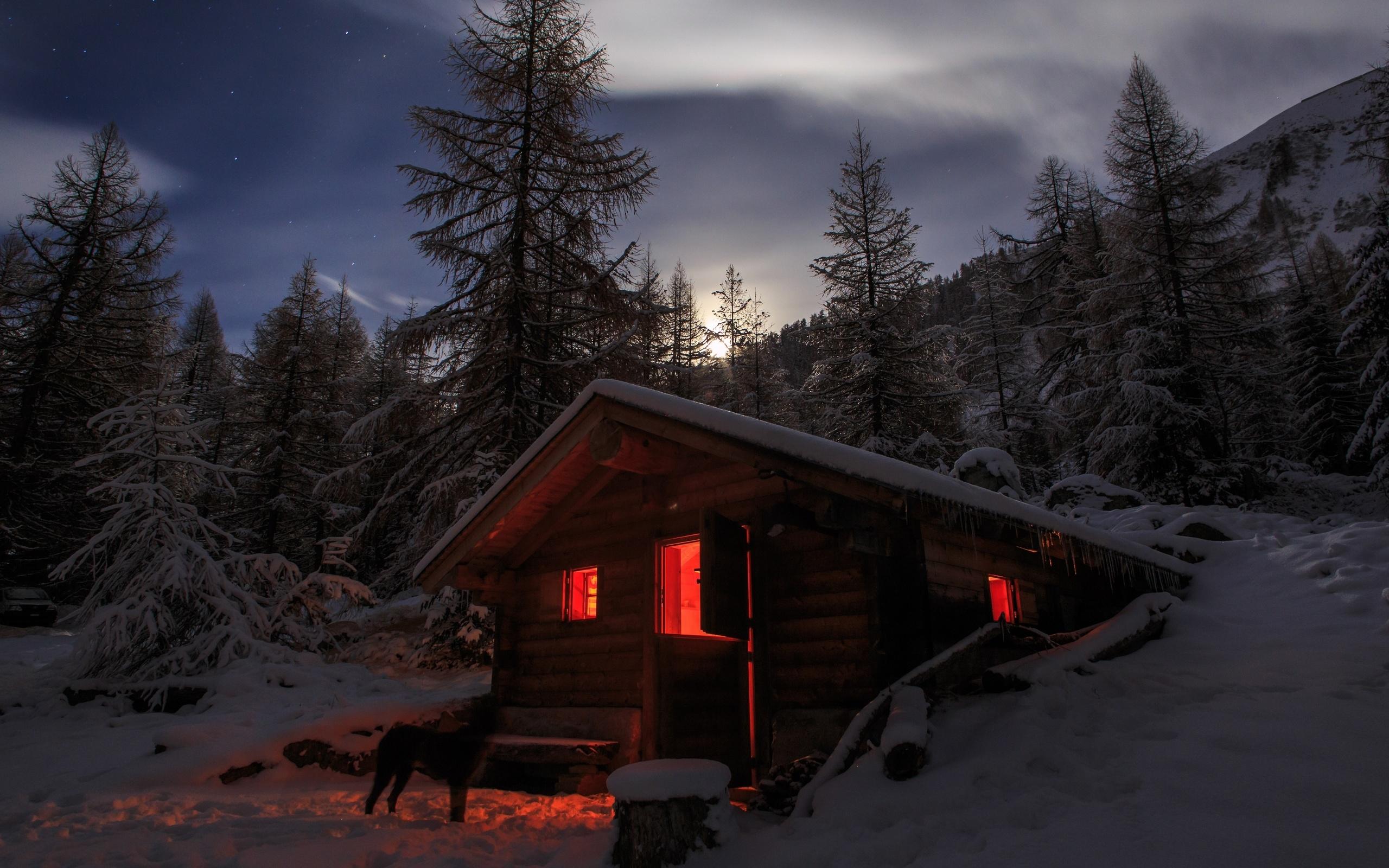 Новый год в лесной хижине картинки