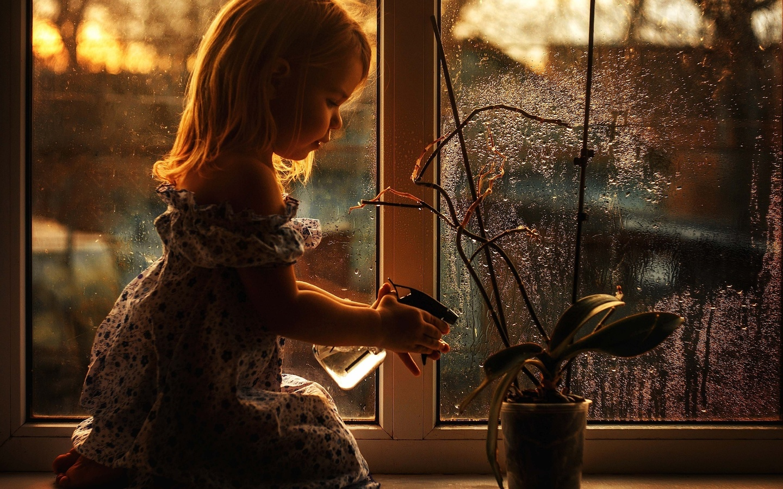 хорошего картинки сижу у окна дождь как сама