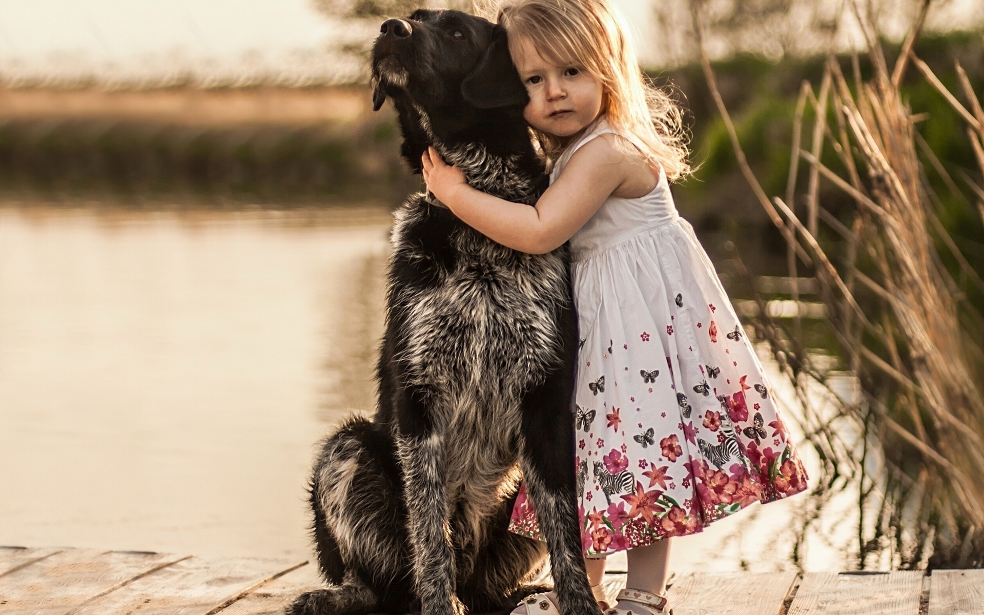 Картинки дружба человек-животные
