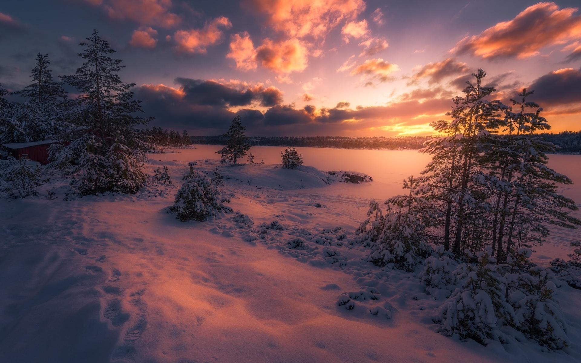 Конкурс фотографий зимние каникулы точка