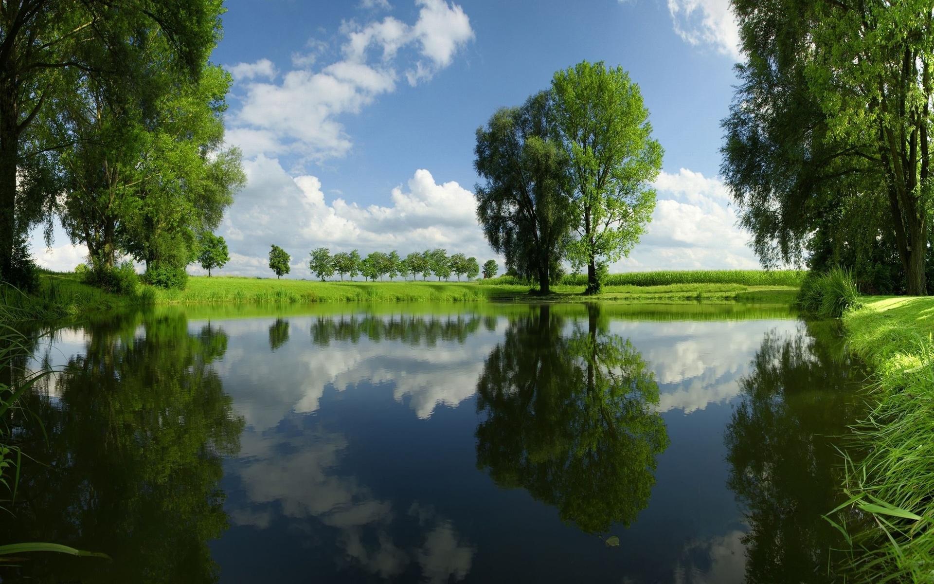 началось картинка поле лес и речка способа носить самый