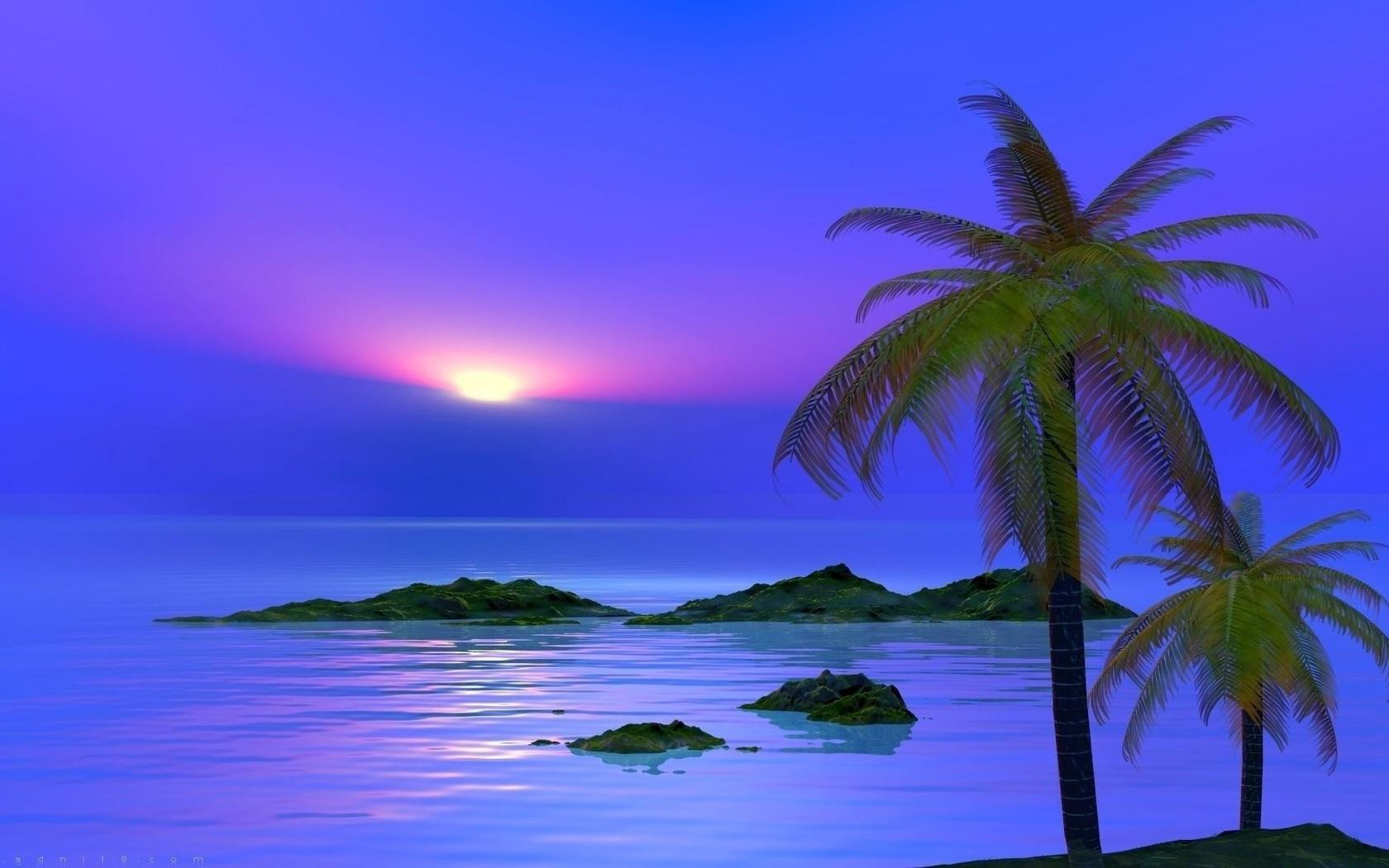 Красивые картинки море и пальмы на рабочий стол