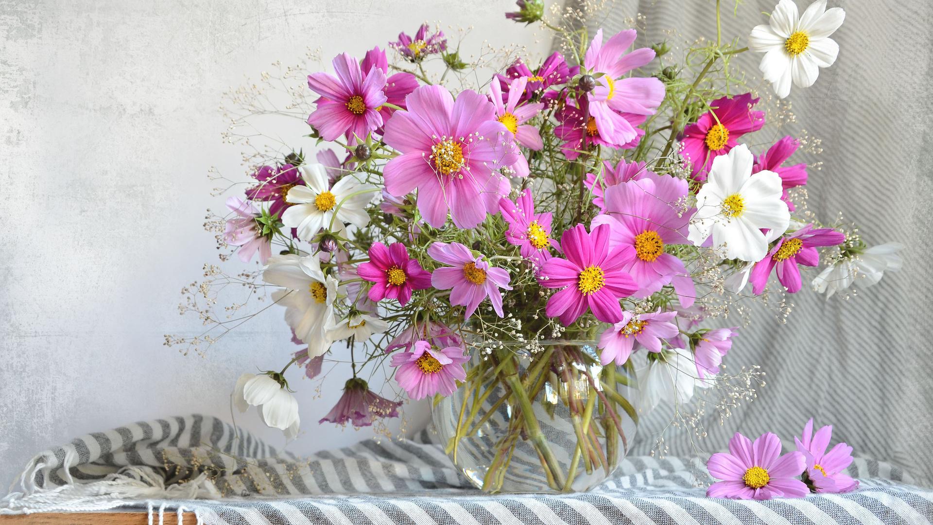 цветы лета в вазах картинки кухонного фартука