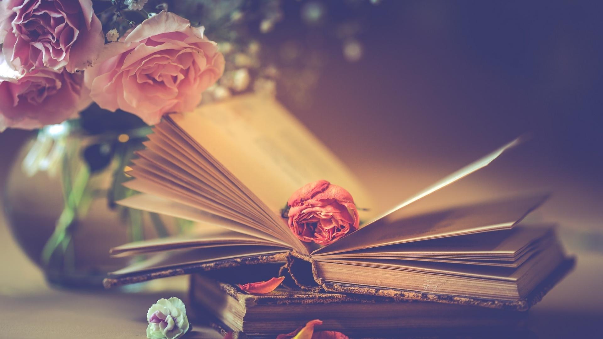 Картинки книги поздравления