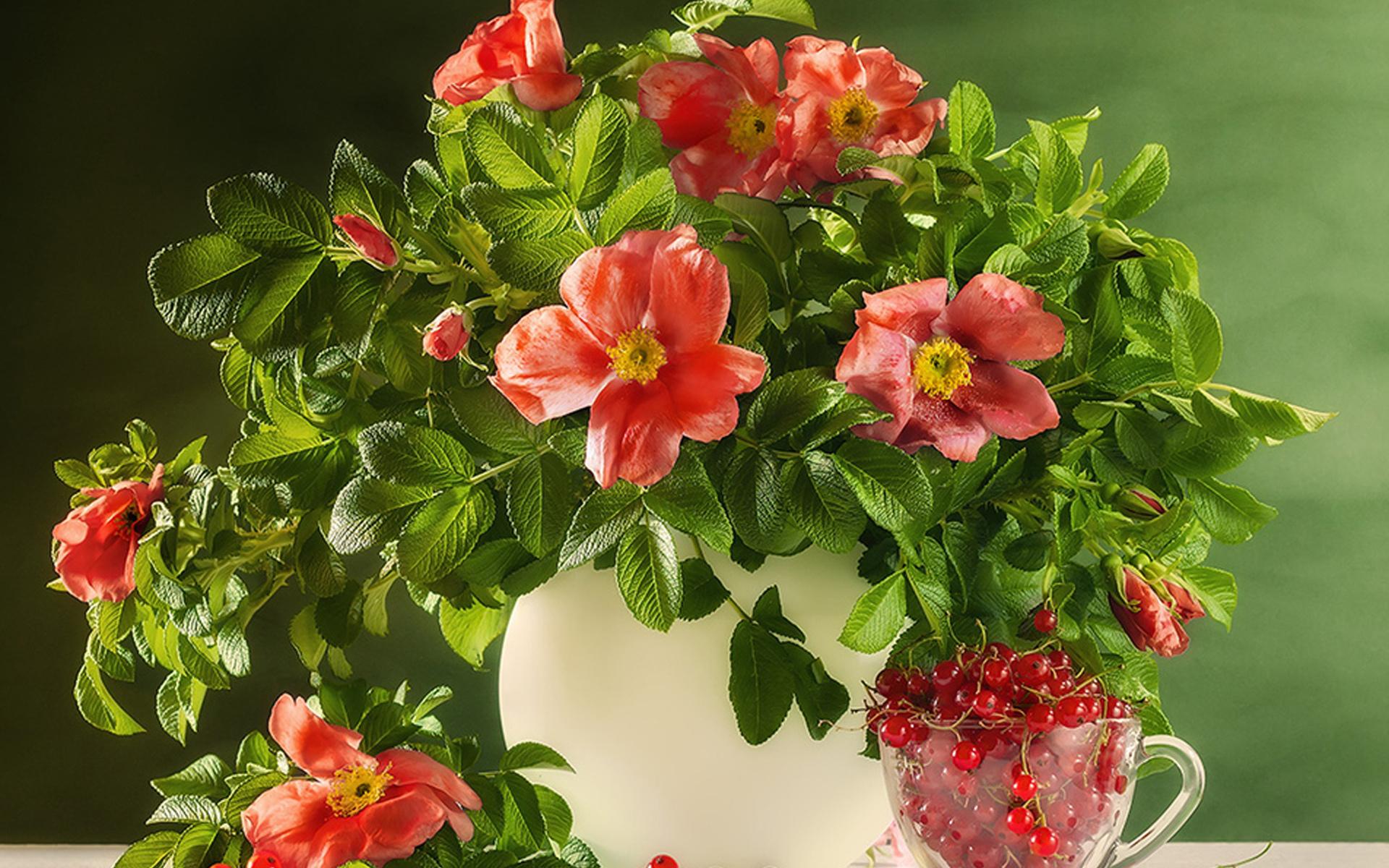 отличного настроения картинки с цветами большое количество тары
