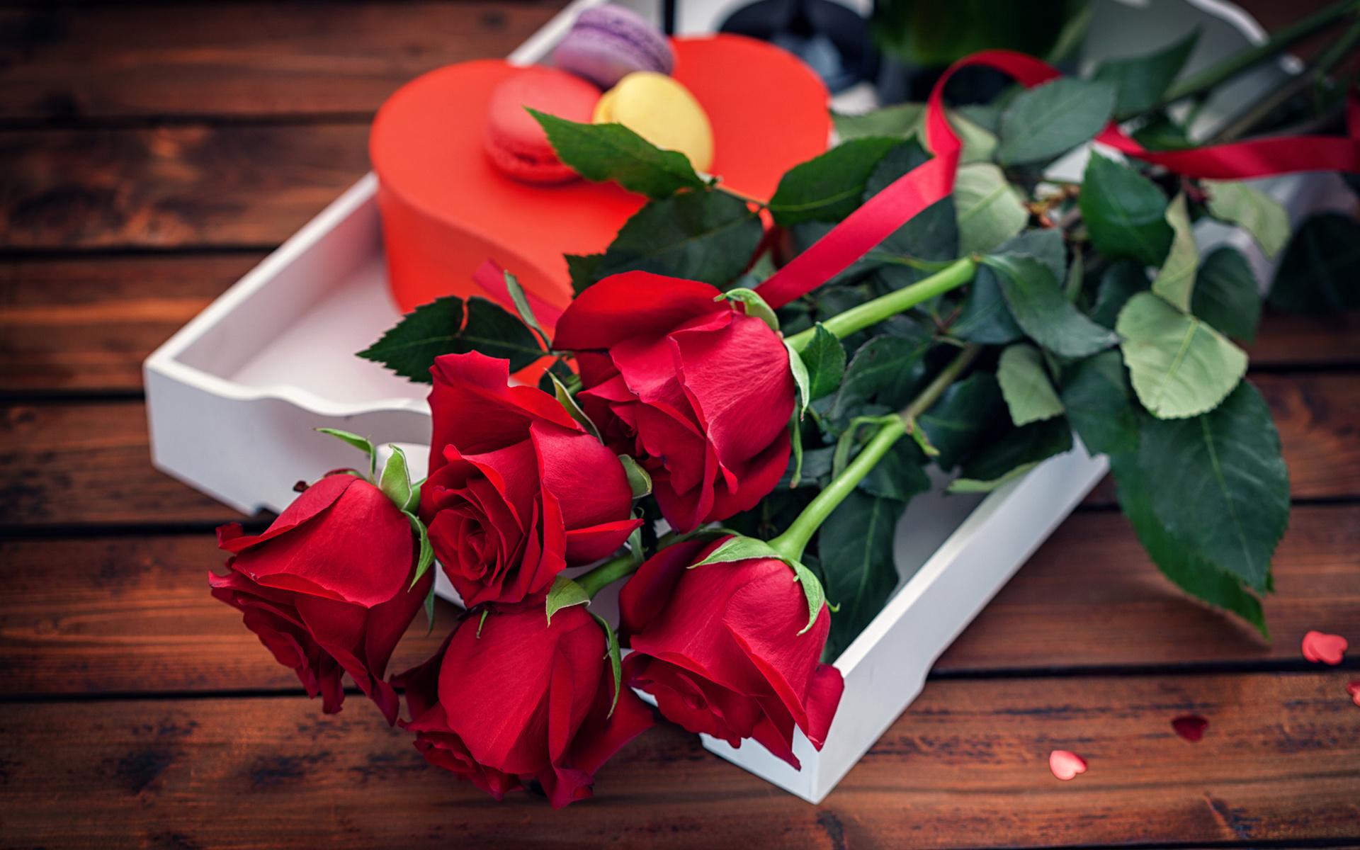 Цветы подарок с днем рождения фотографиями, световую