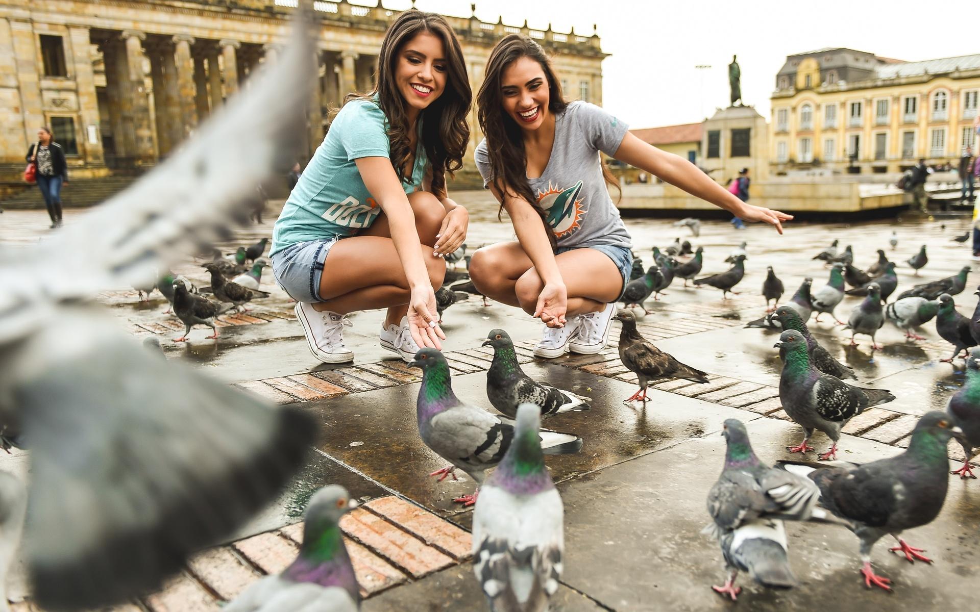 шварцнейгер личность фото с птицами и люди используют для декорирования