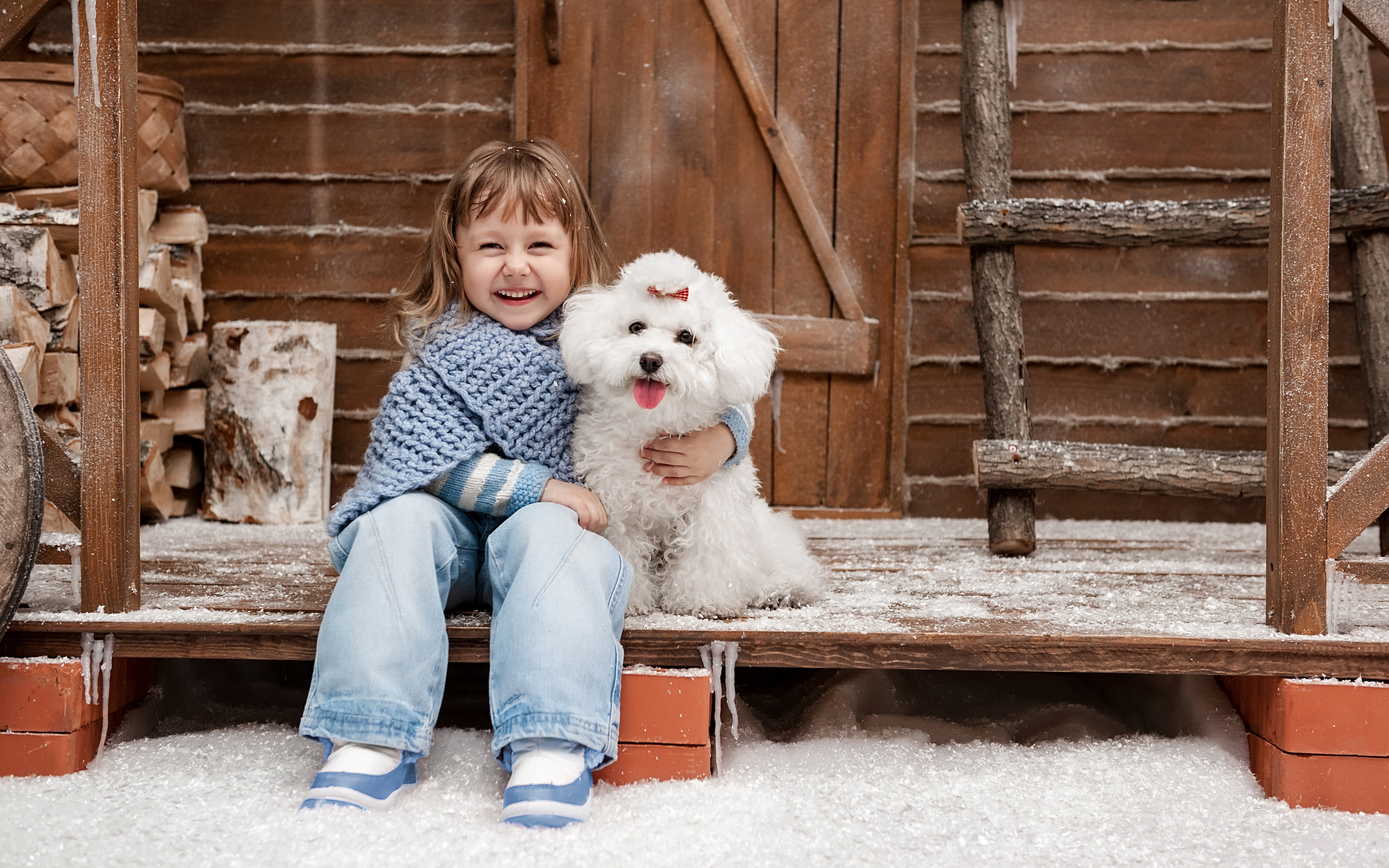 Картинки щенок дома