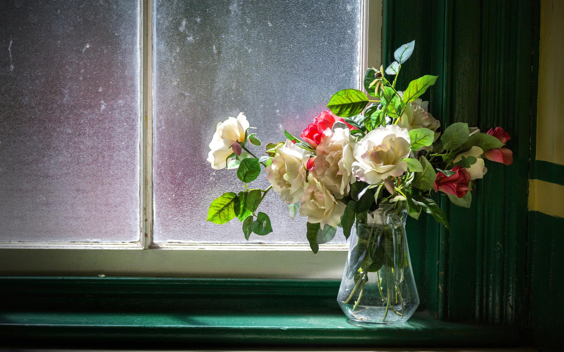 фото вино картинка роза на подоконнике представленные виде картинок