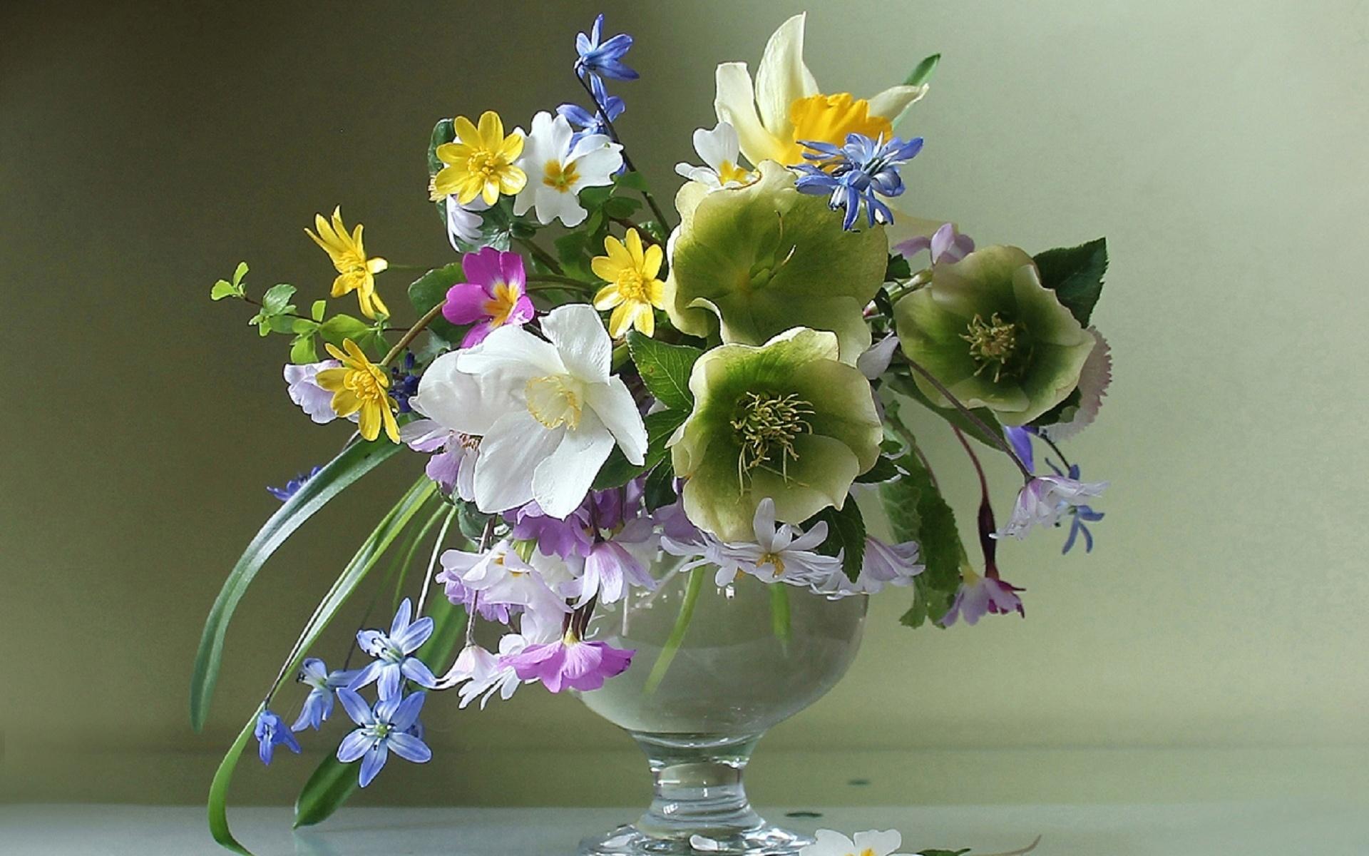 всего она весенние первоцветы вазе фото картинки чтобы