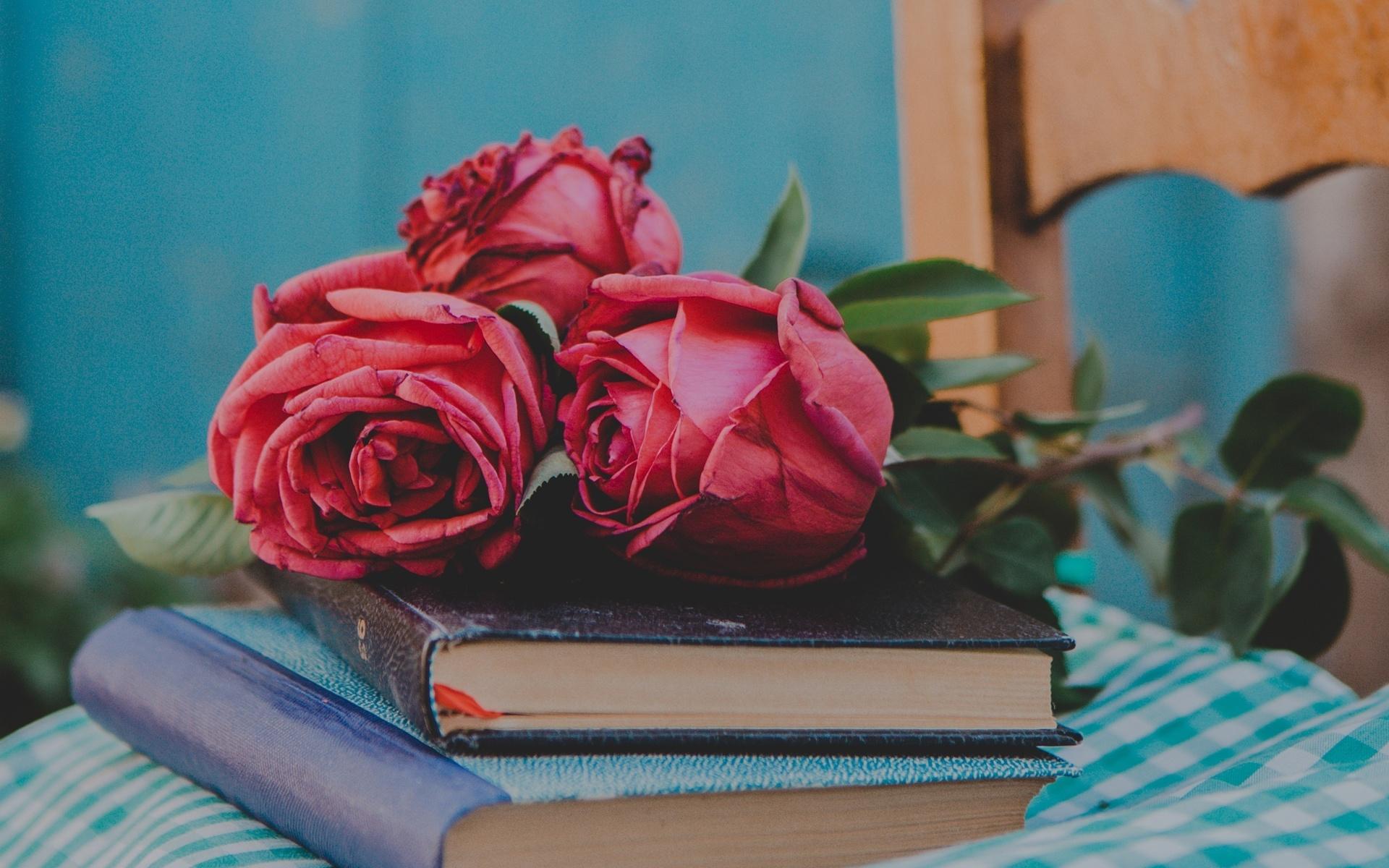 время картинки для обложки книги цветы важная часть иммунного