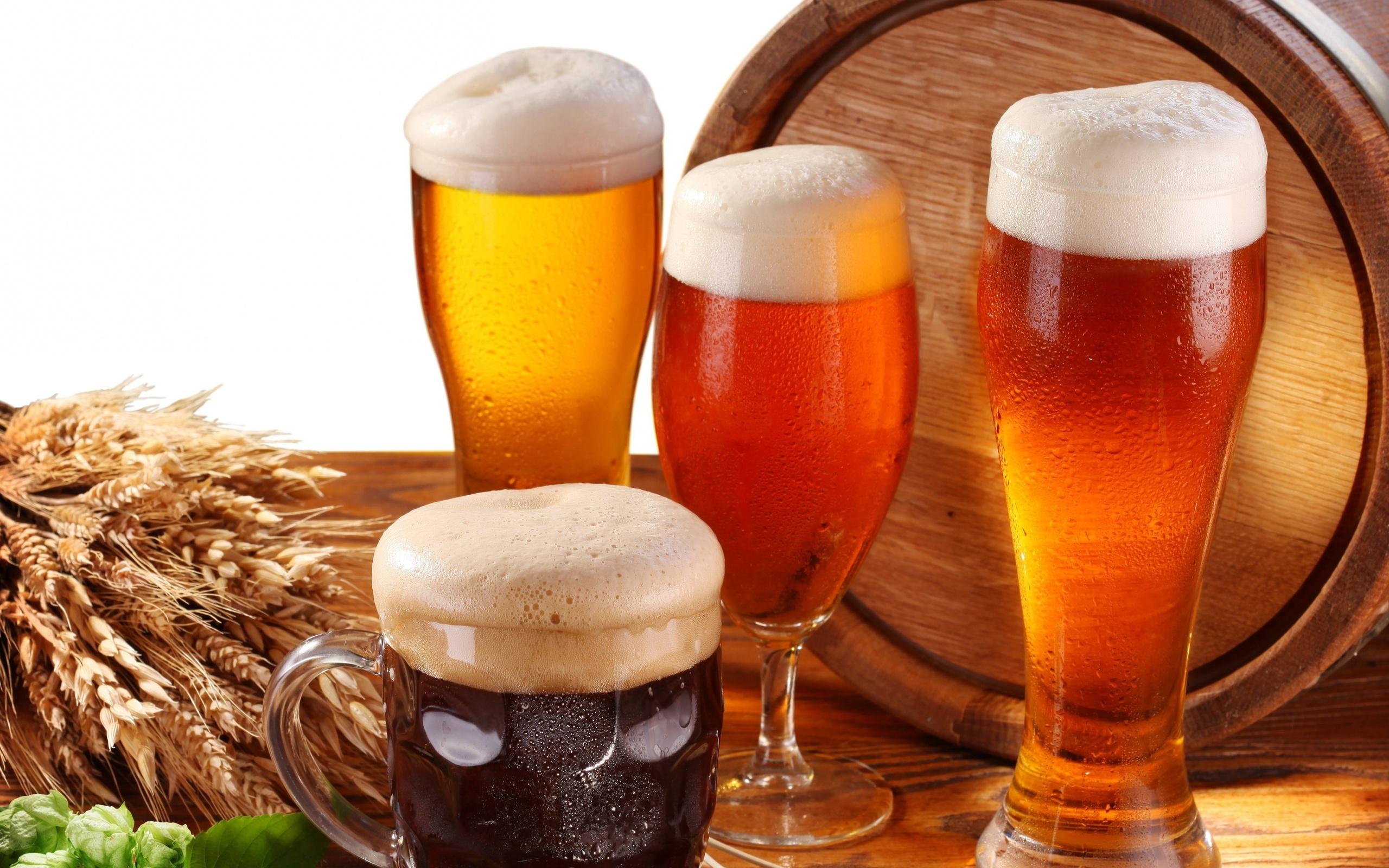 картинки пиво в кружке разливное посмотреть выполнен бруса, утеплен