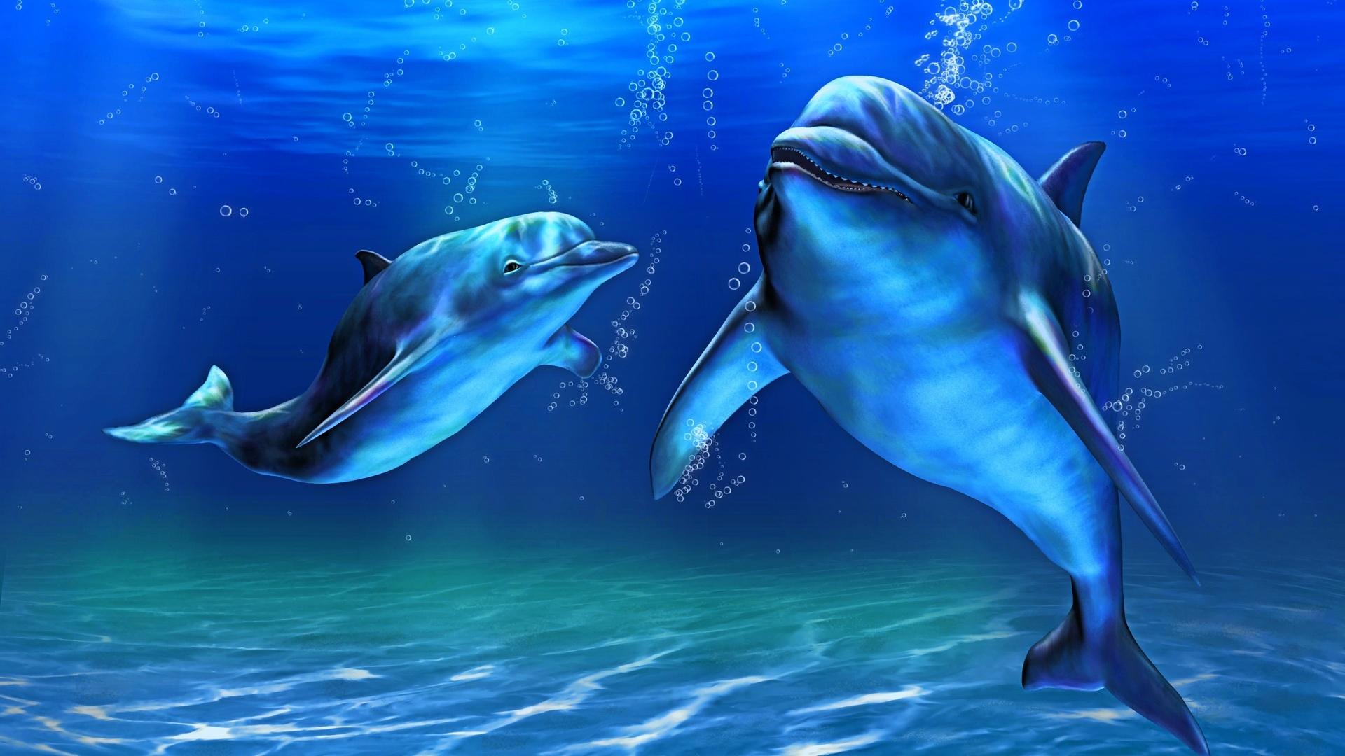 Картинка с дельфинчиками, ноября день народного