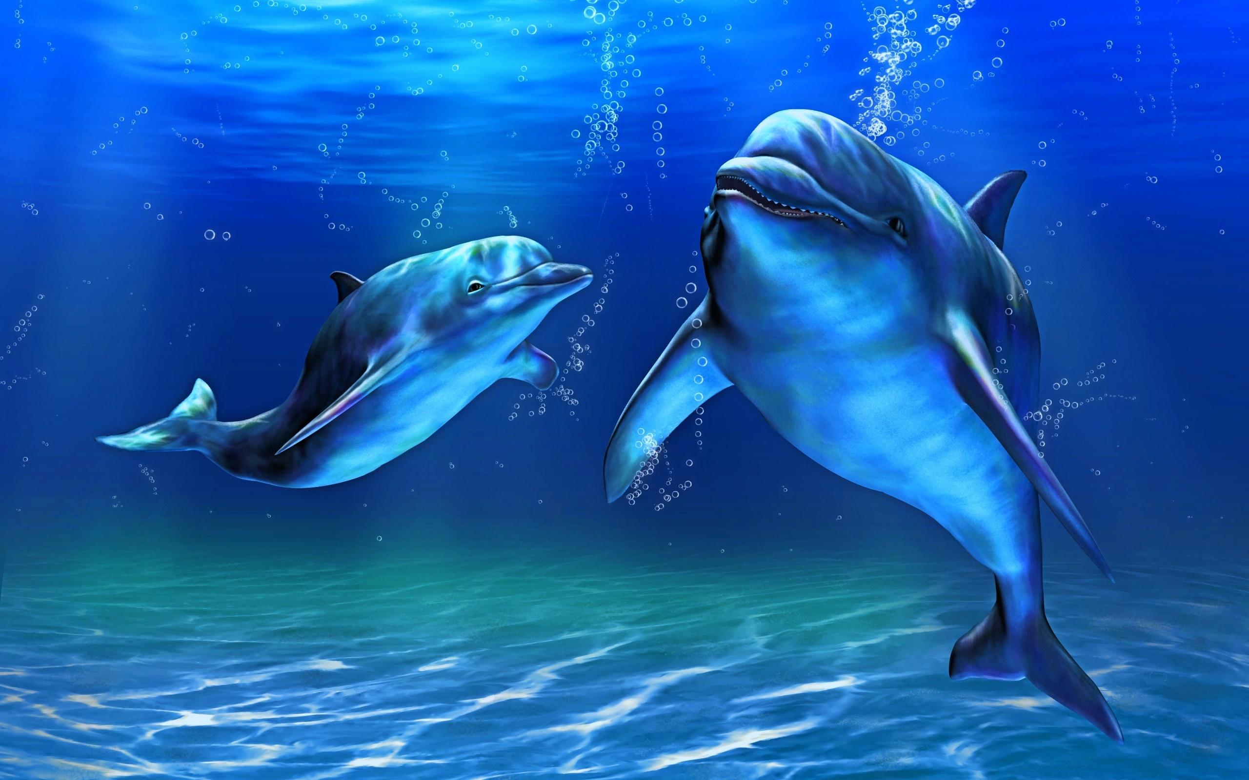 картинка с морскими обитателями джигурды