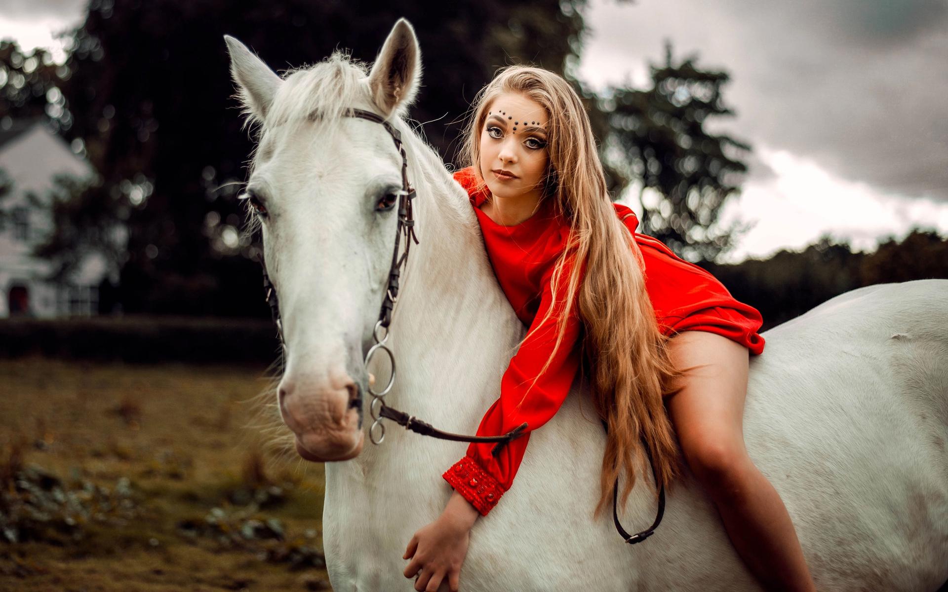 Картинка баба конь