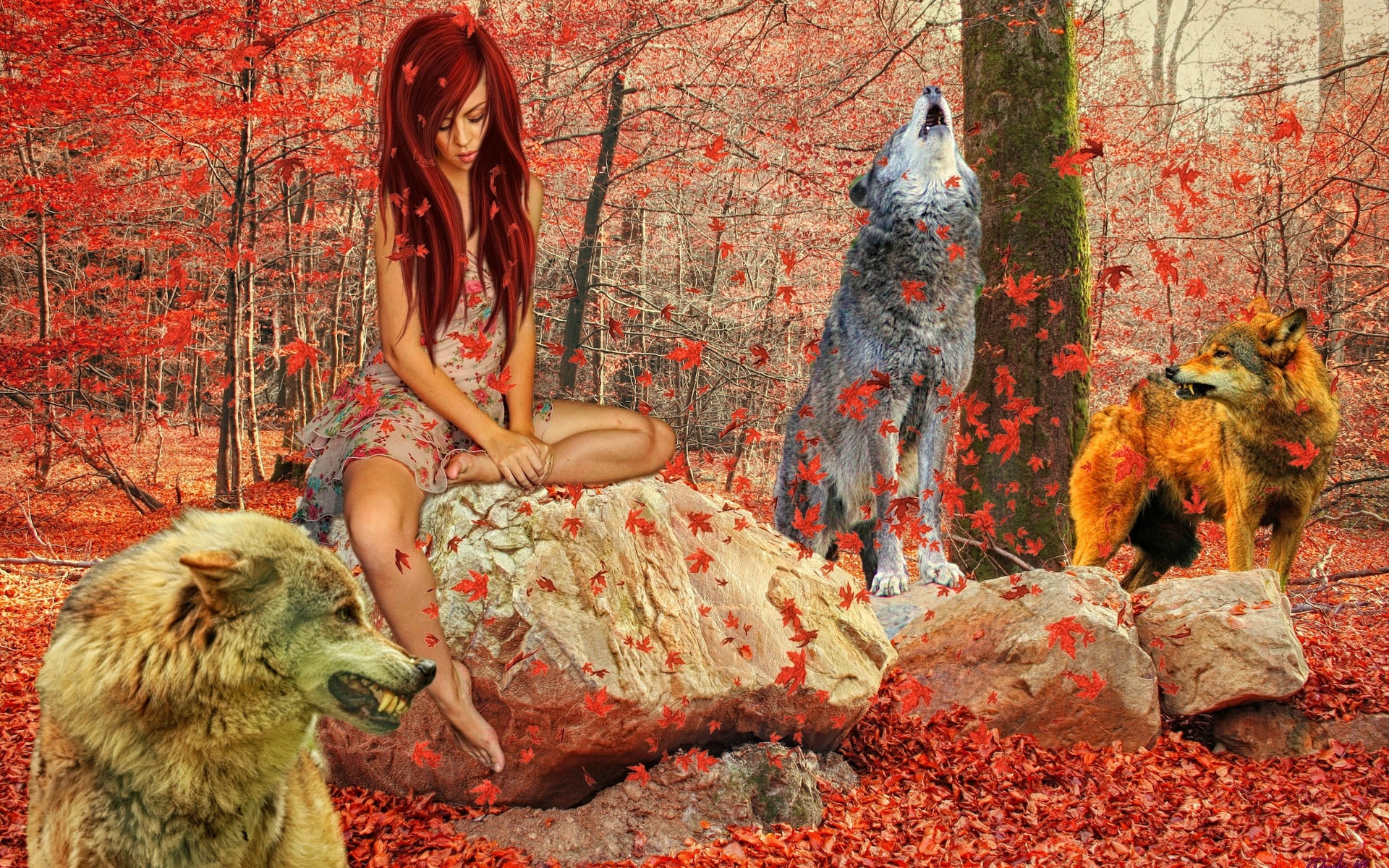 Картинки волки и девушки осень