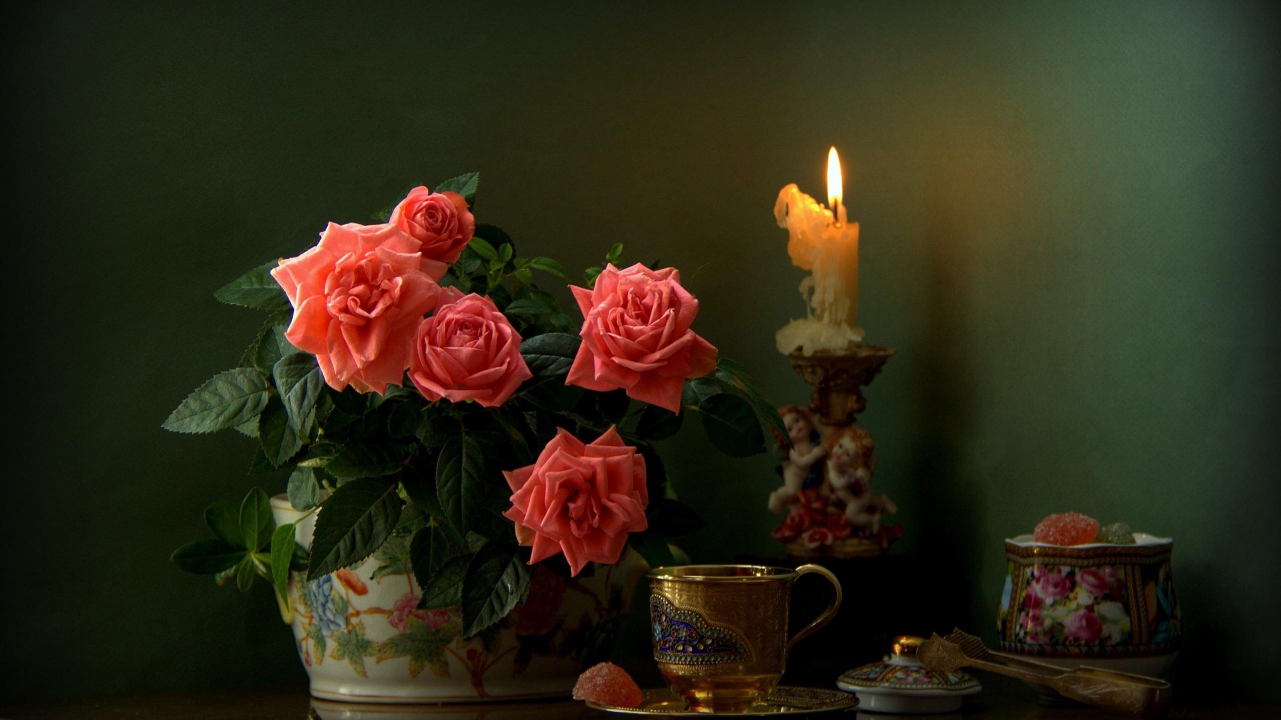 добрый вечер картинки букет роз расположен небольшой стол