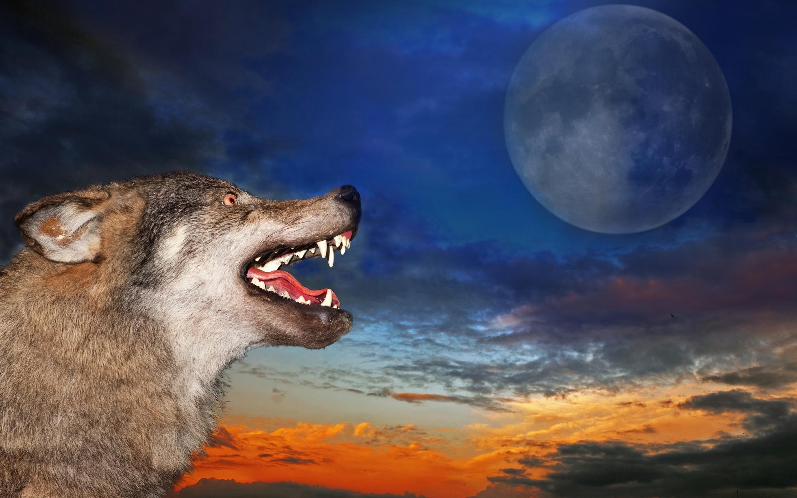 Картинка зевающая луна