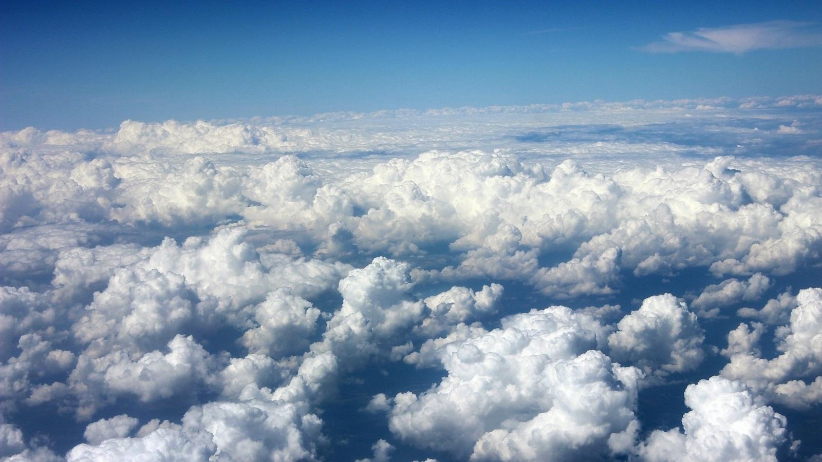 Красивые цветы, картинки красивое небо с облаками