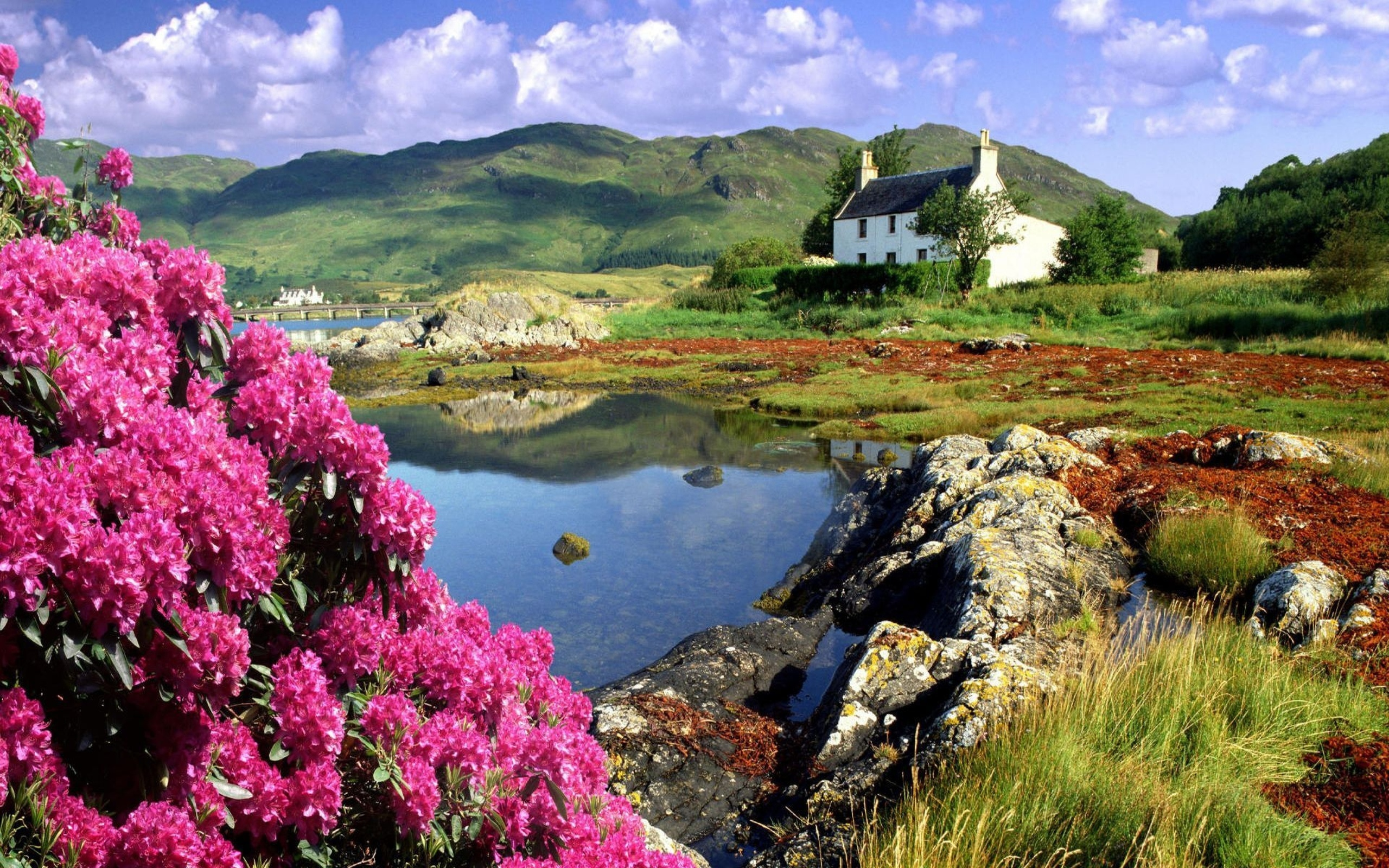 картинки красивые природа весна и лето несмотря