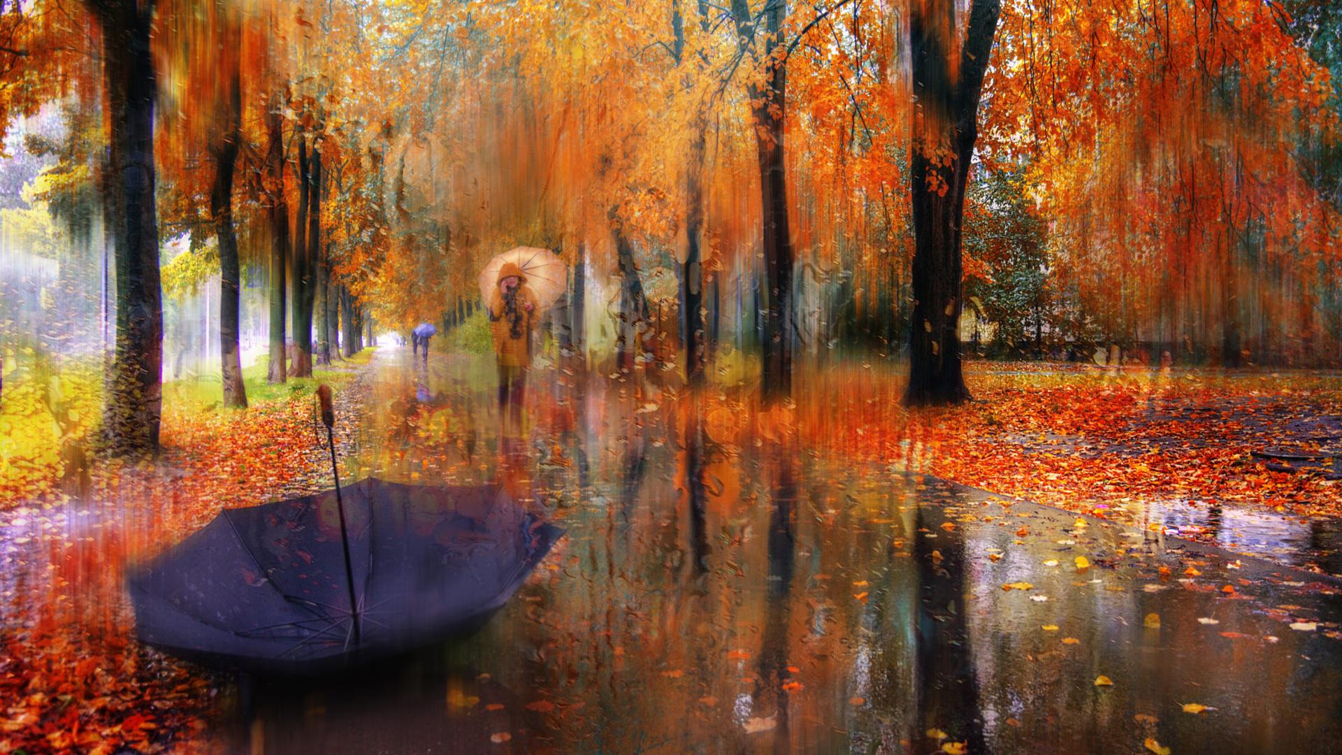 Осенние картинки с дождем, картинки жизни