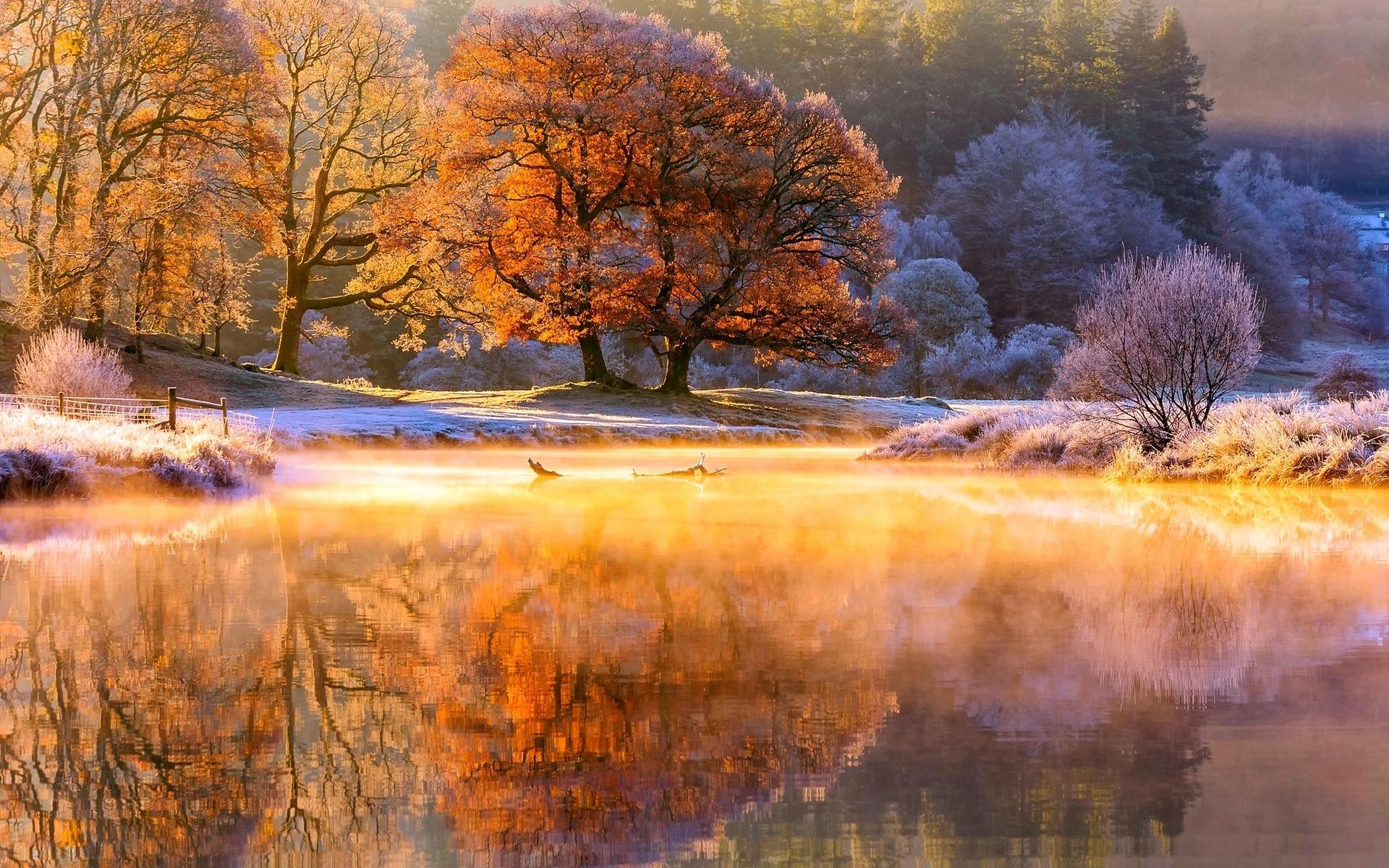Картинка ноябрьский пейзаж