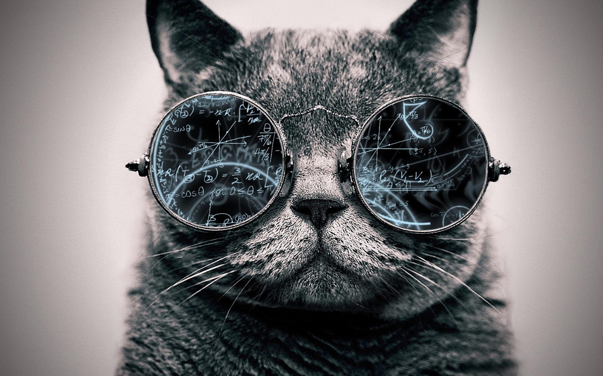 Крутые картинки с очками