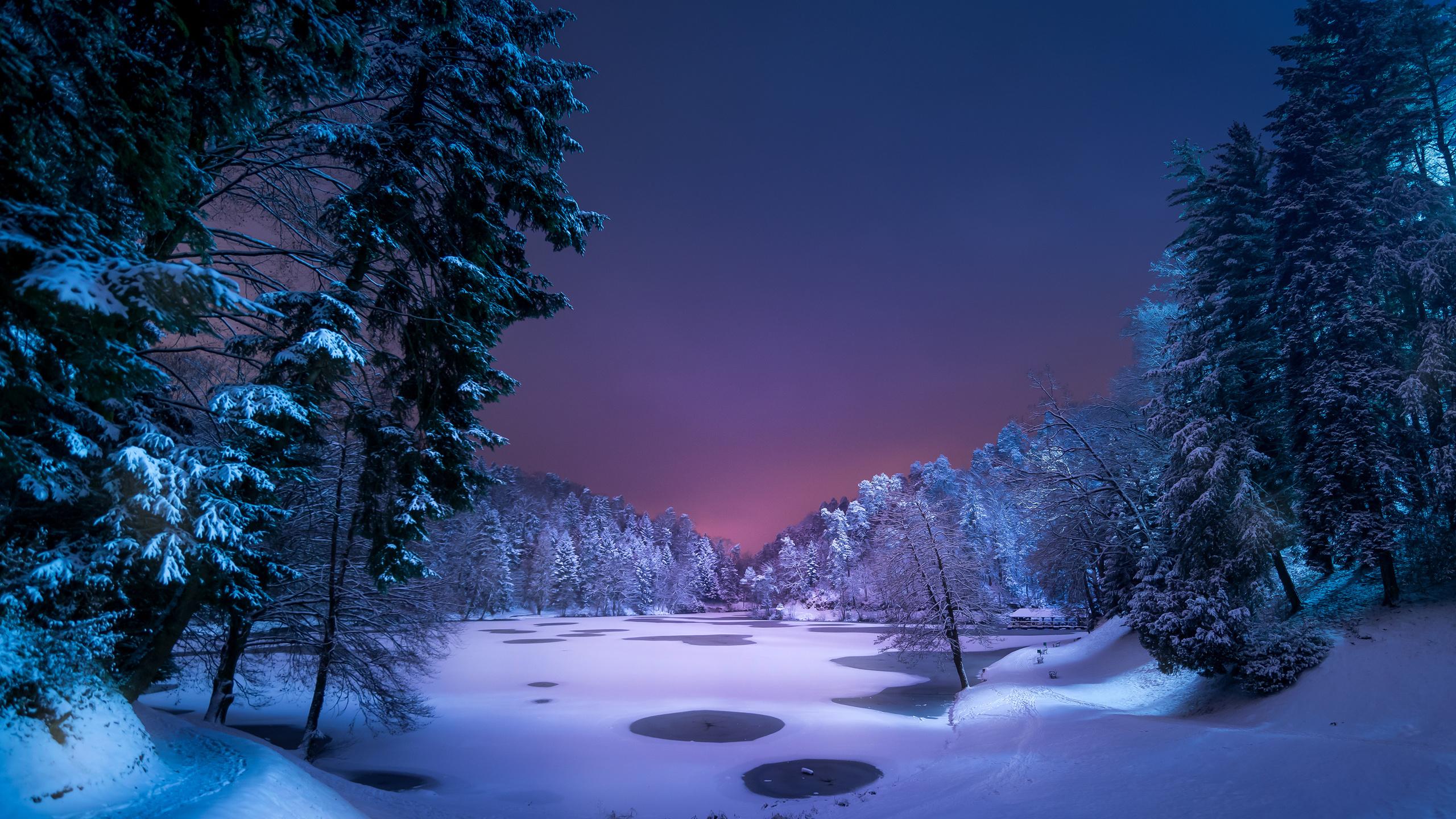 Красивые картинки зимние ночи