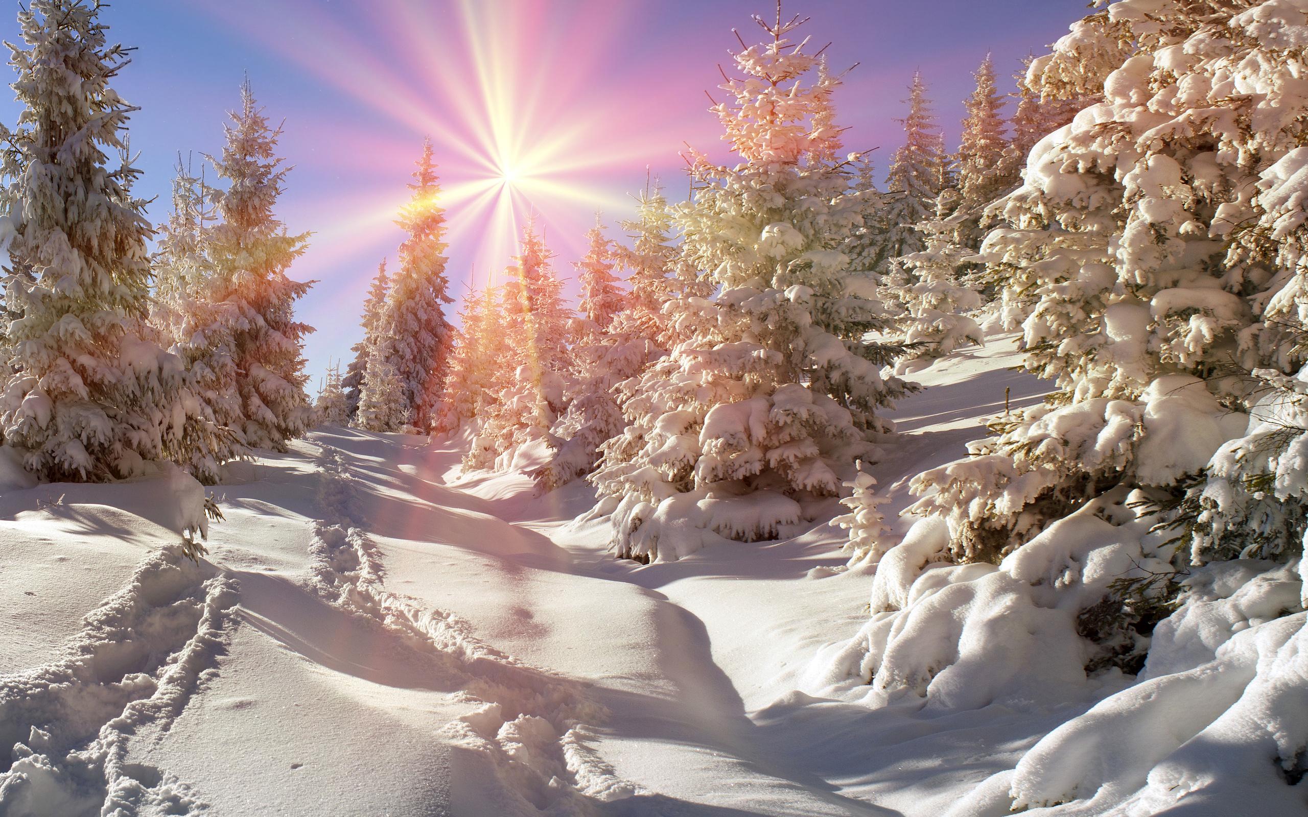 джессики русская зима красивые картинки бокал рудник