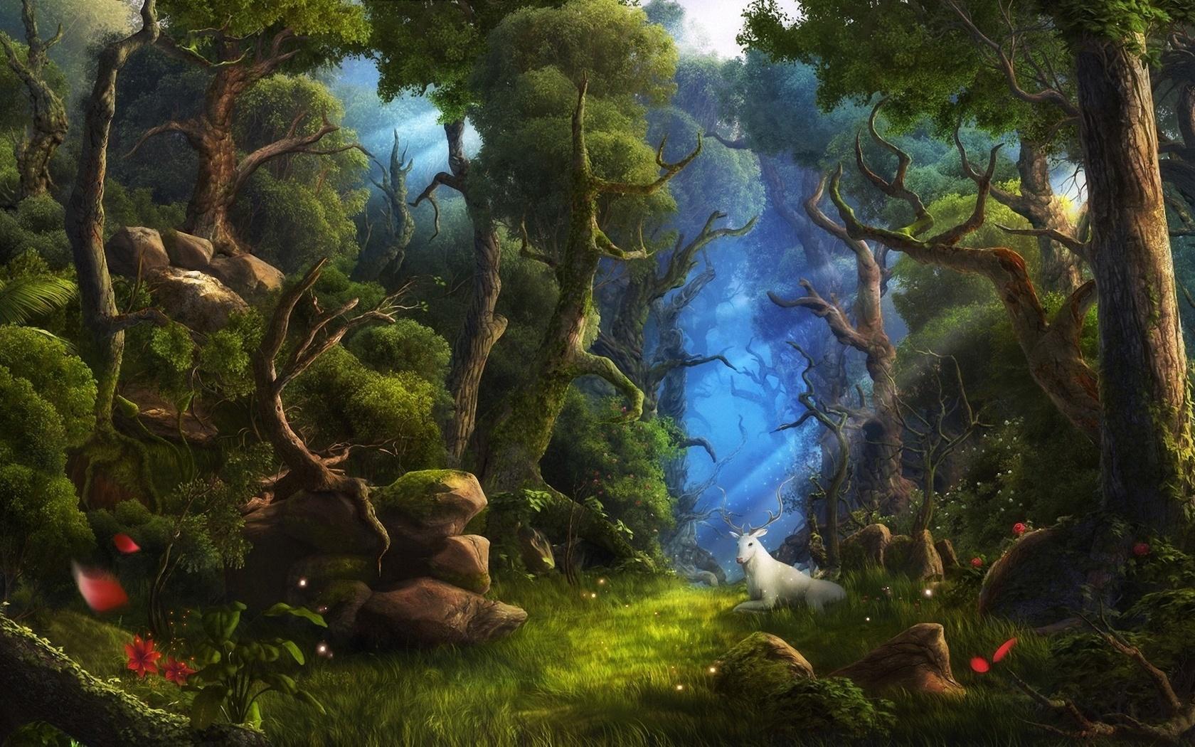 старайтесь, фэнтези лес рисунок хотелось снять недорогое