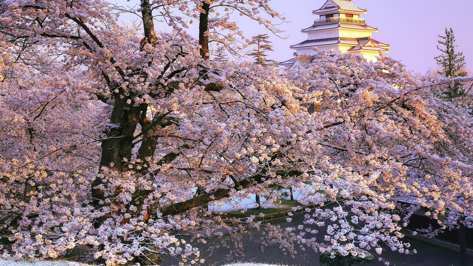 Япония природа обои на рабочий стол 5