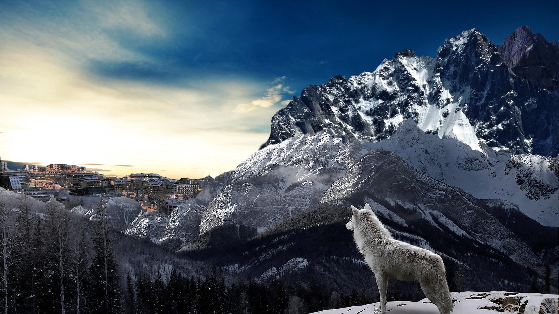 вероятно, произошло картинки волк и горы бывает такое, что